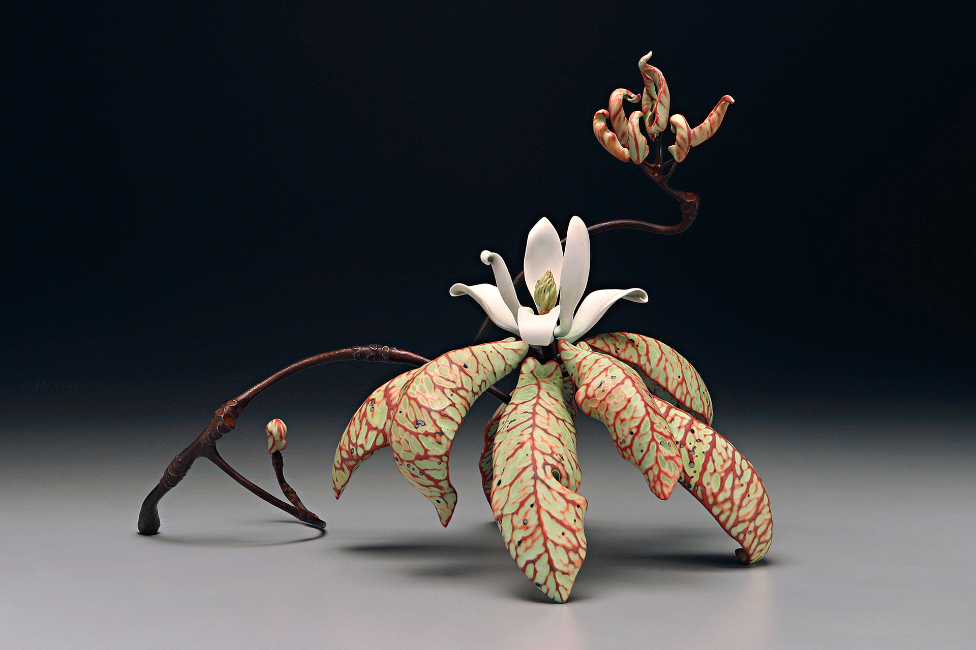 Undressed Magnolia, 16h x 22w x 16d, Silica bronze and porcelain with abraded glaze 1920.jpg