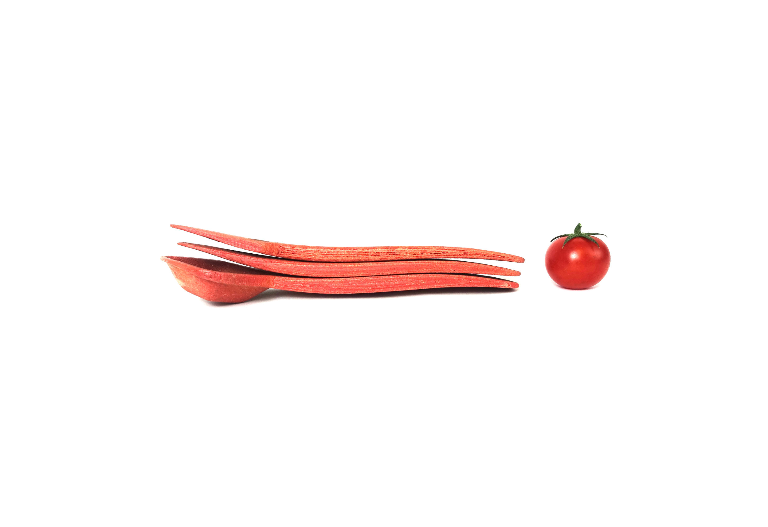 reusable tomato cuttley 2a copy copy.jpg