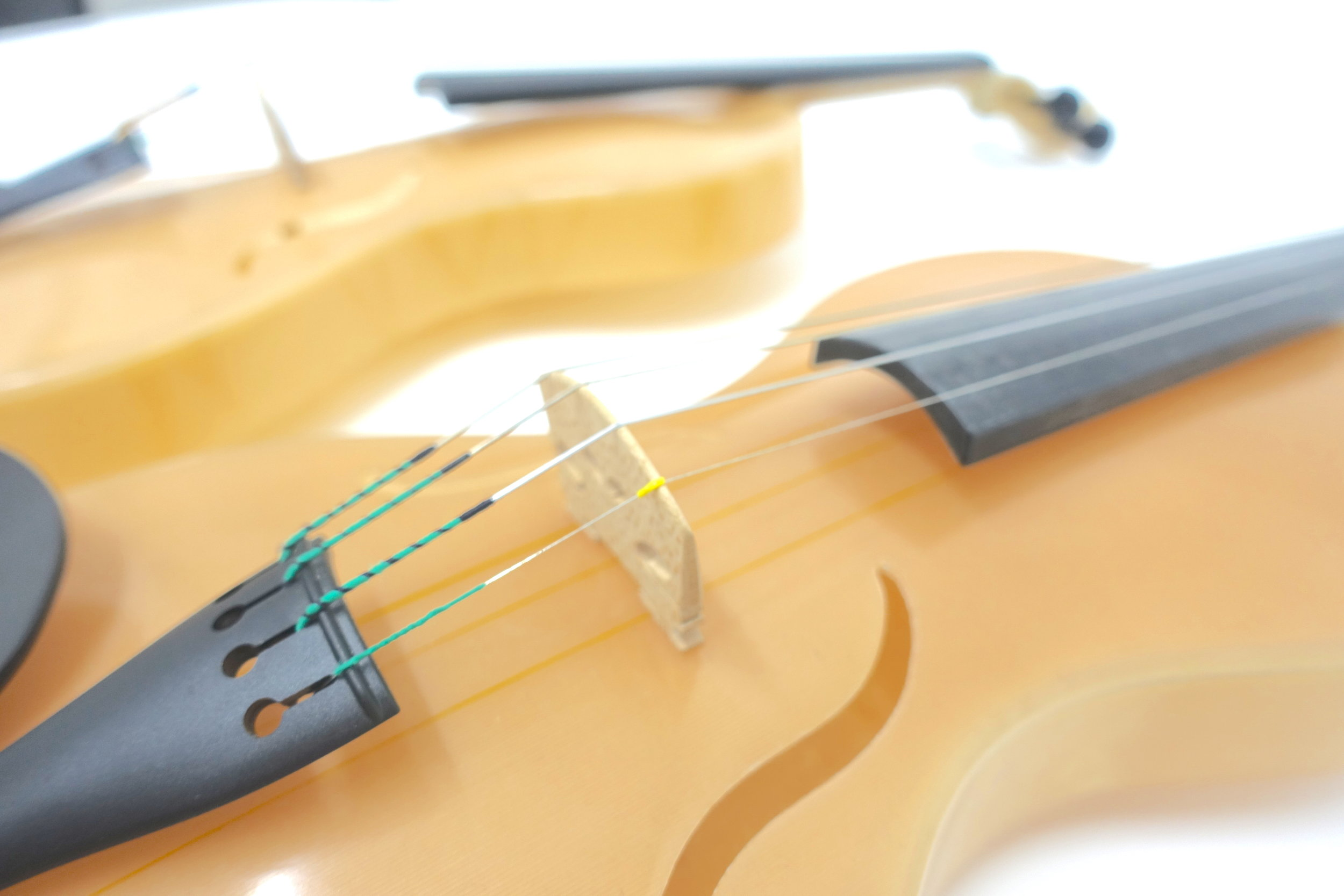 Spider SIlk Violin h.JPG