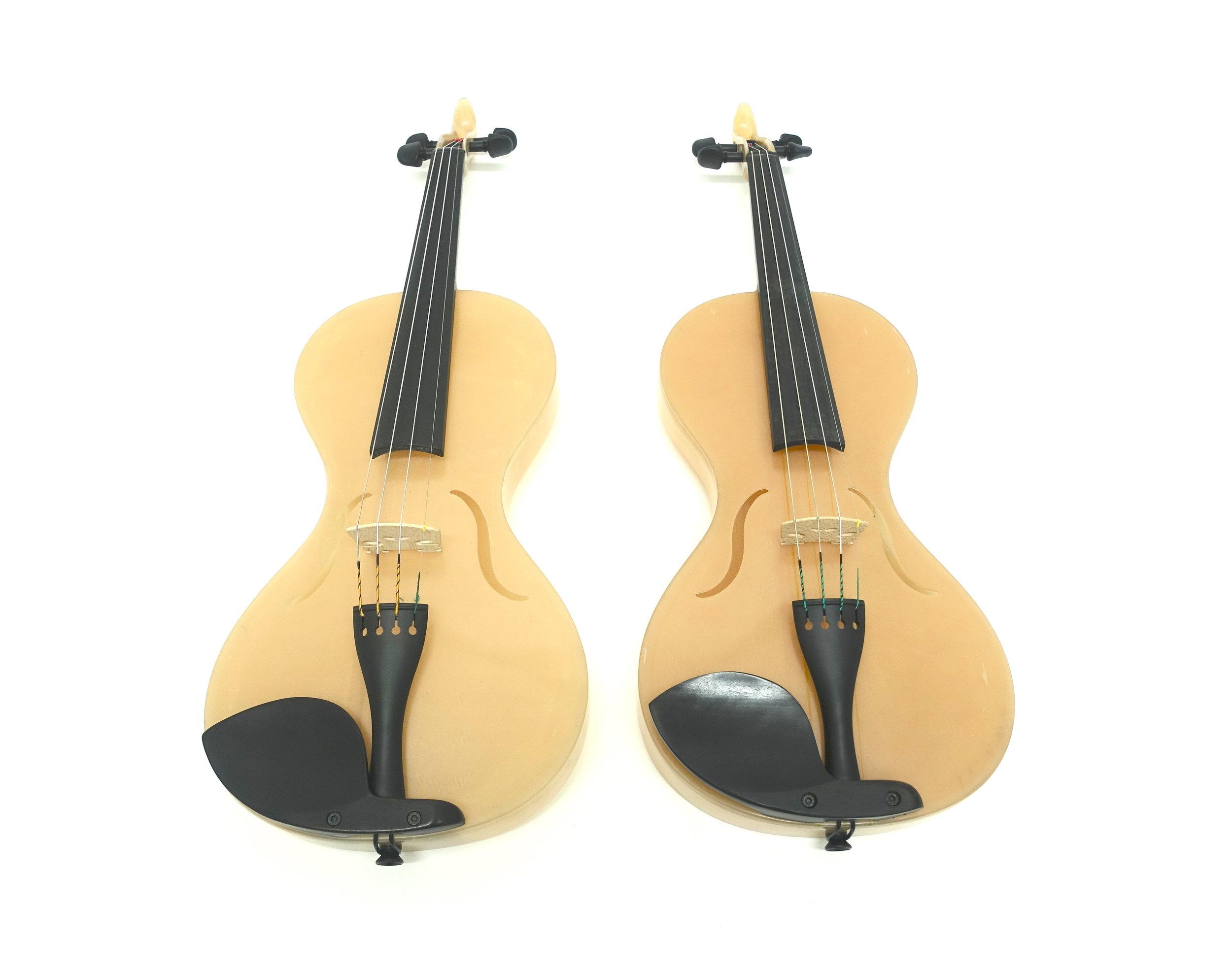 Spider SIlk Violin i.JPG