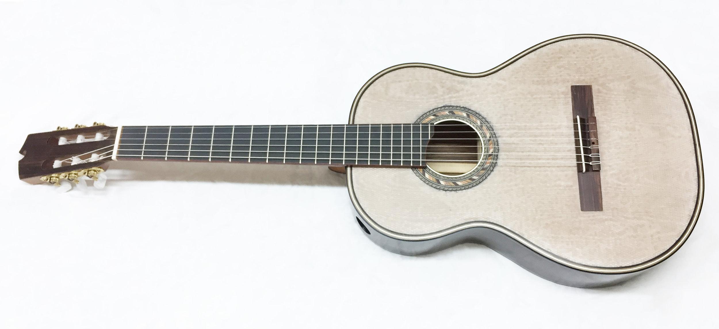 Silk Classical Guitar copy.jpg
