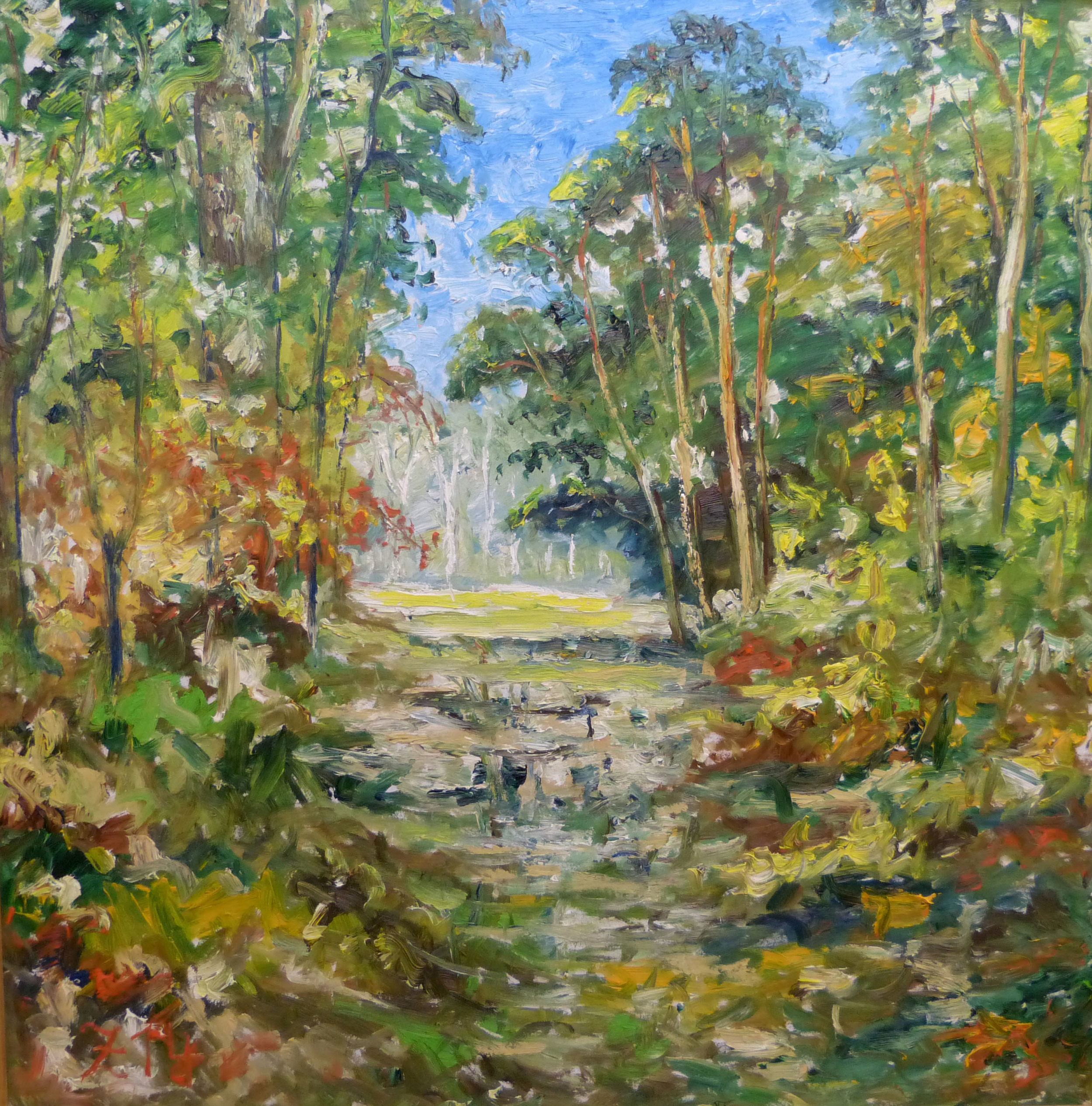 75 Idyllic Forest