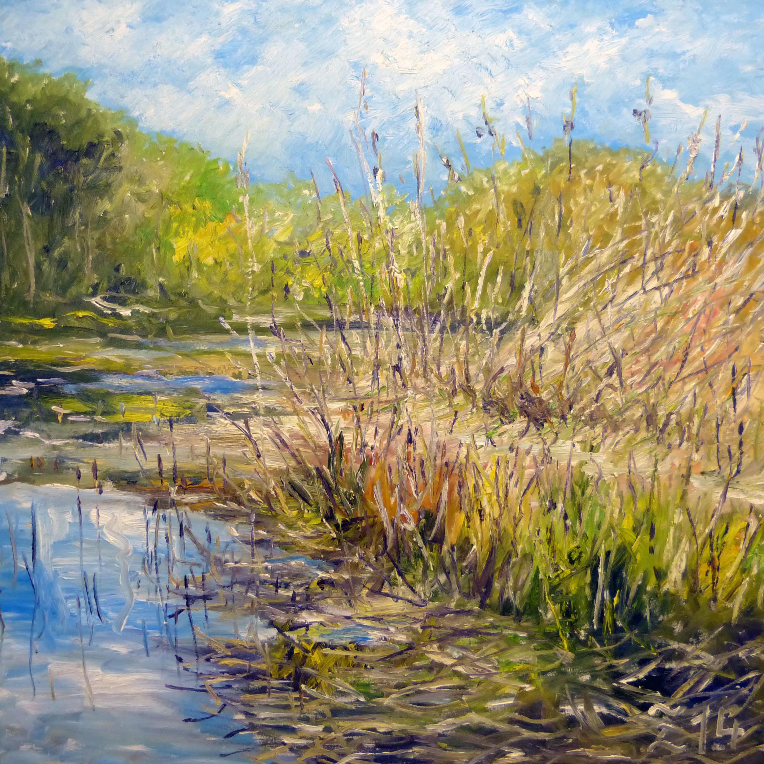 84 Reed Landscape