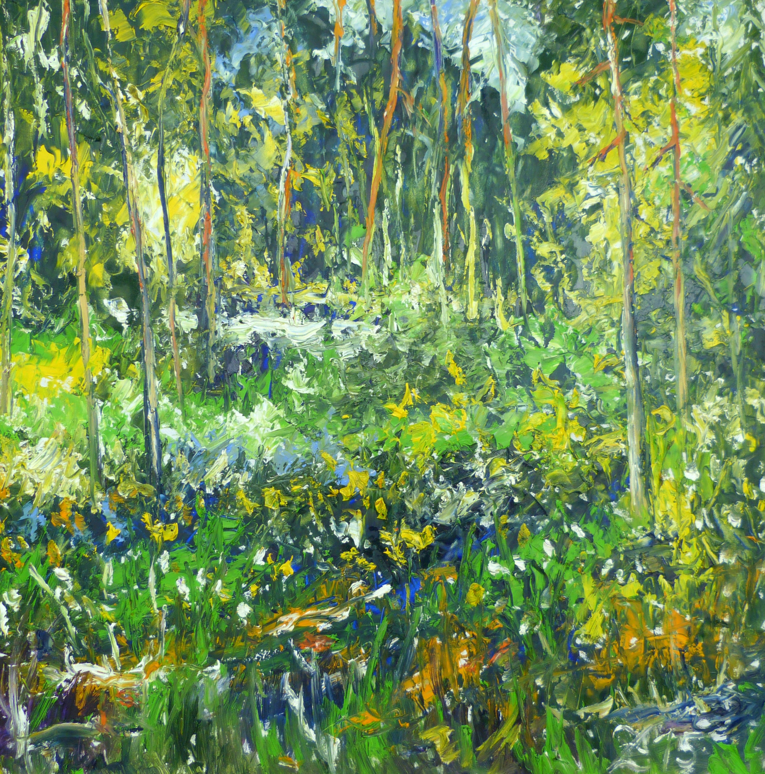 135 Colorful Forest