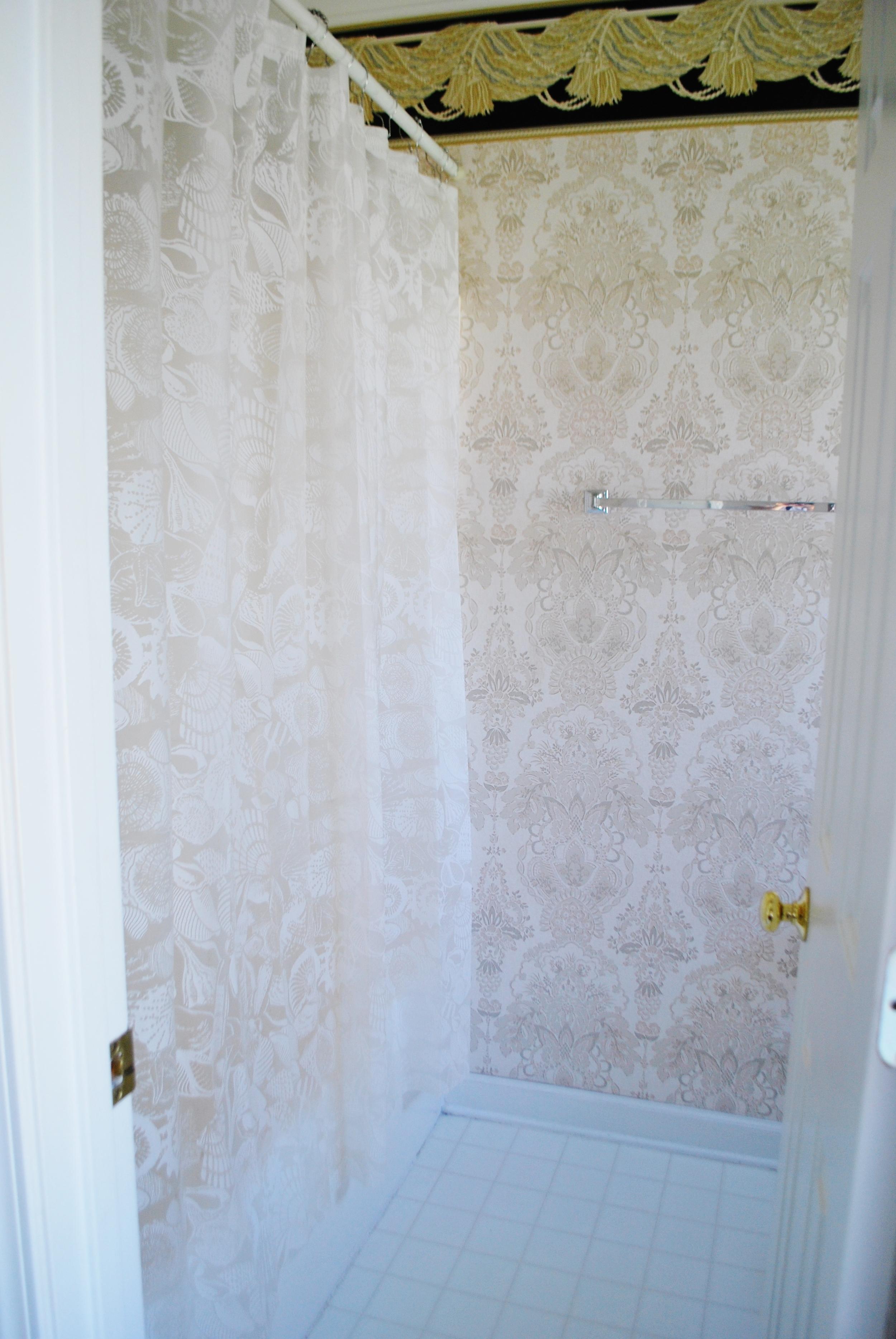 Shower/tub area