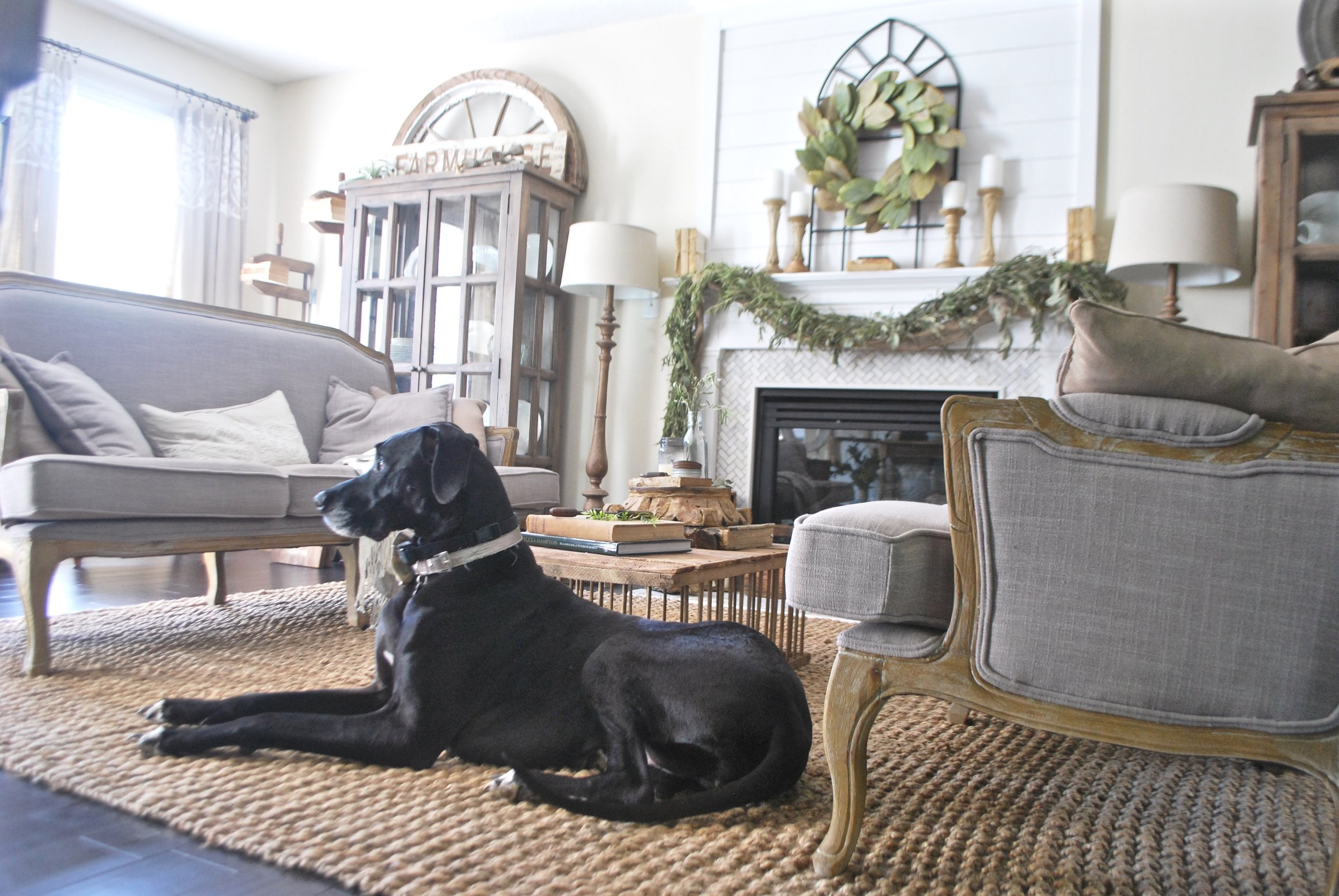 Jute Rug Review- Dog Approved- My Farmhouse Style Living Room