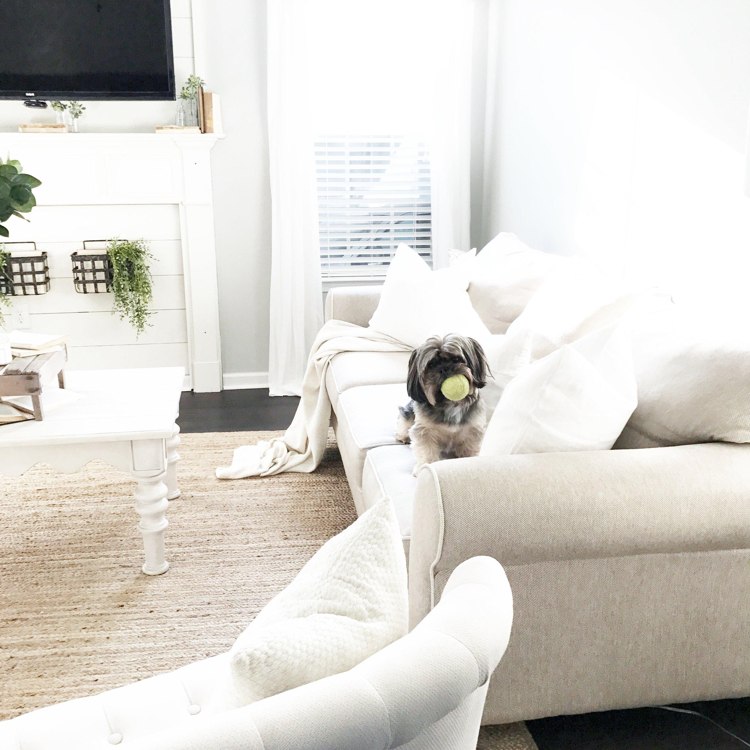 Farmhouse Style Living Room- Interior Design By Plum Pretty Decor and Design