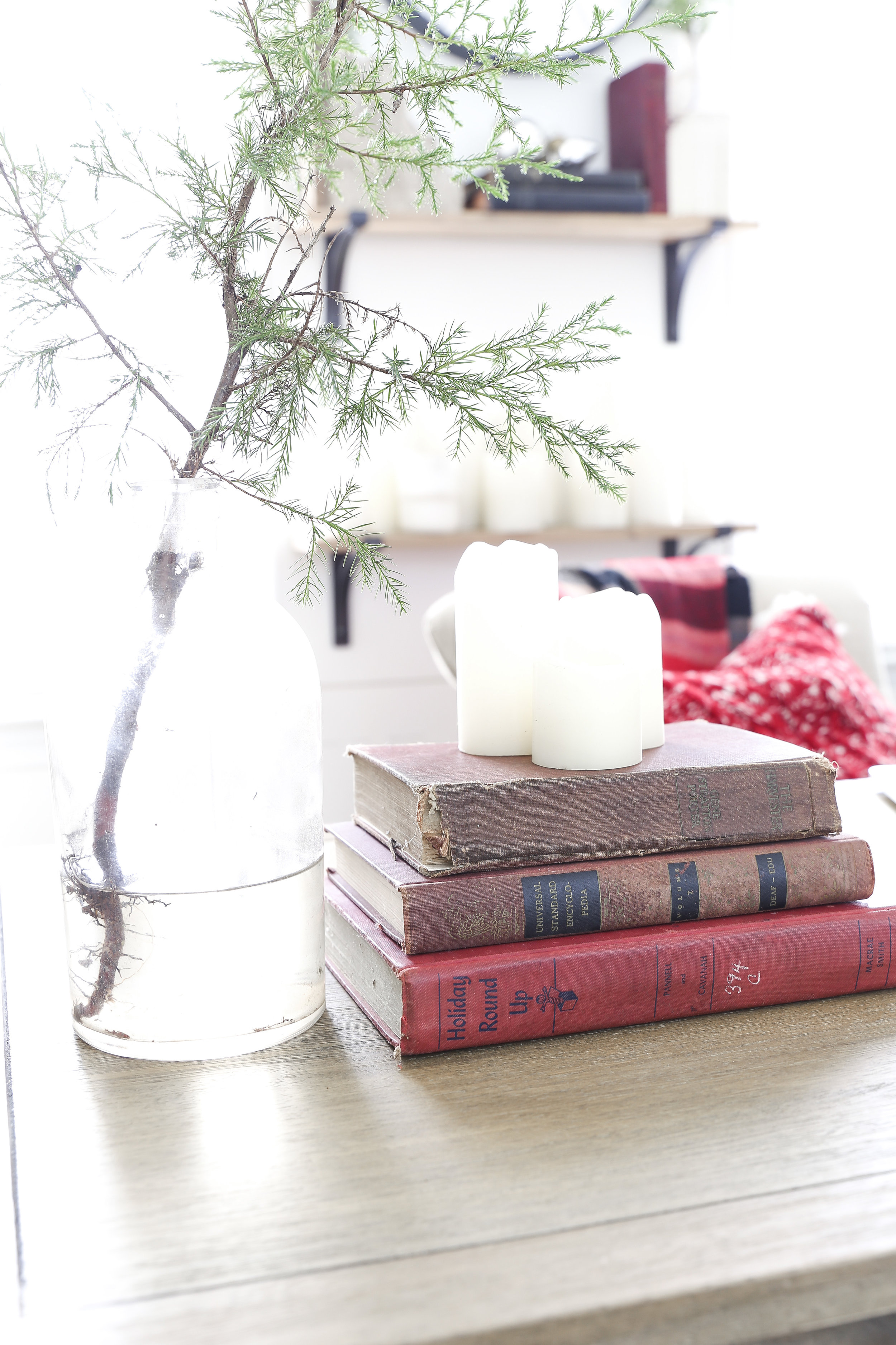 Christmas_Home_Tour_Stacked_Red_Books_in_Office copy.jpg