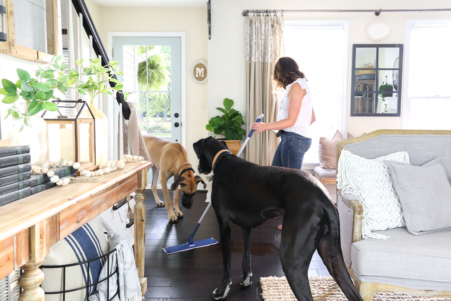 Bona Quick Clean Products- The perfect solution for a streak free clean even with dirty pet paws. Used and Trusted by Plum Pretty Decor and Design