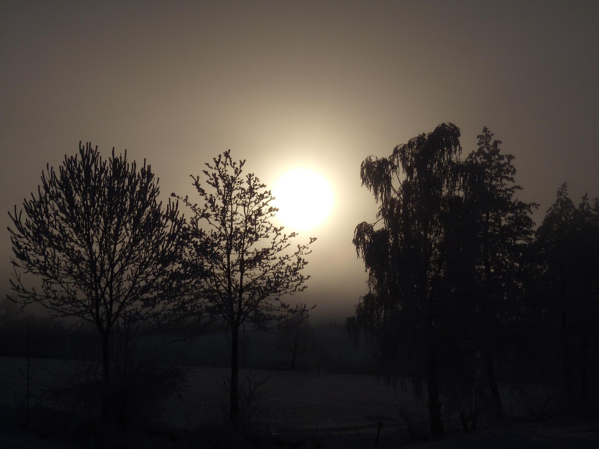 winter-mood-113325_1920.jpg