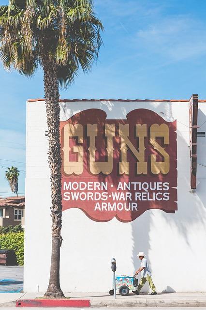 guns-2203656_640.jpg