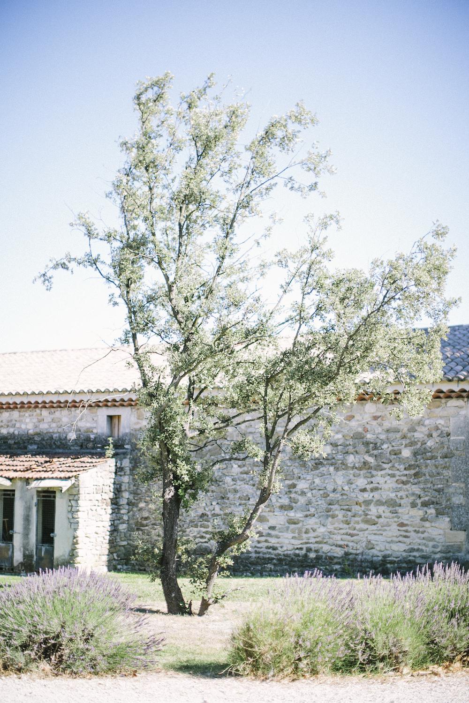 saya-photography-rustic-french-wedding-provence-domaines-de-patras-.jpg