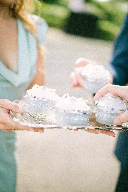 raw-saya-catherine-edward-274 c .jpgtraditional-persian-wedding-bastide-du-roy-french-riviera-