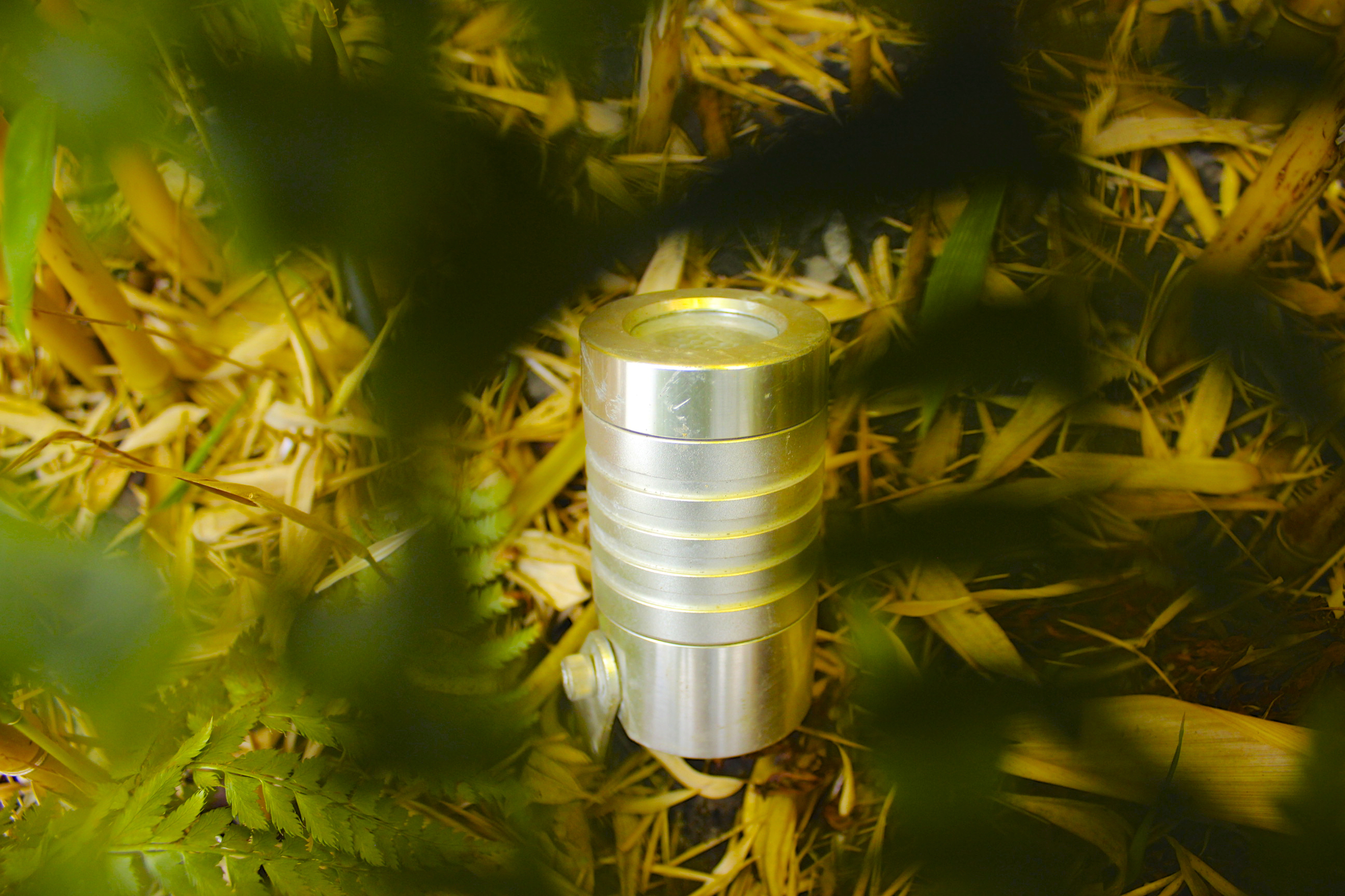 Stainless Steel Garden Light