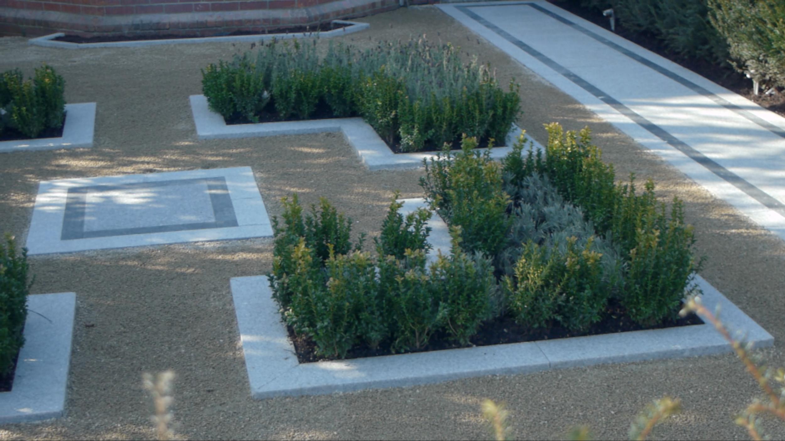 Buxus Garden with Lander