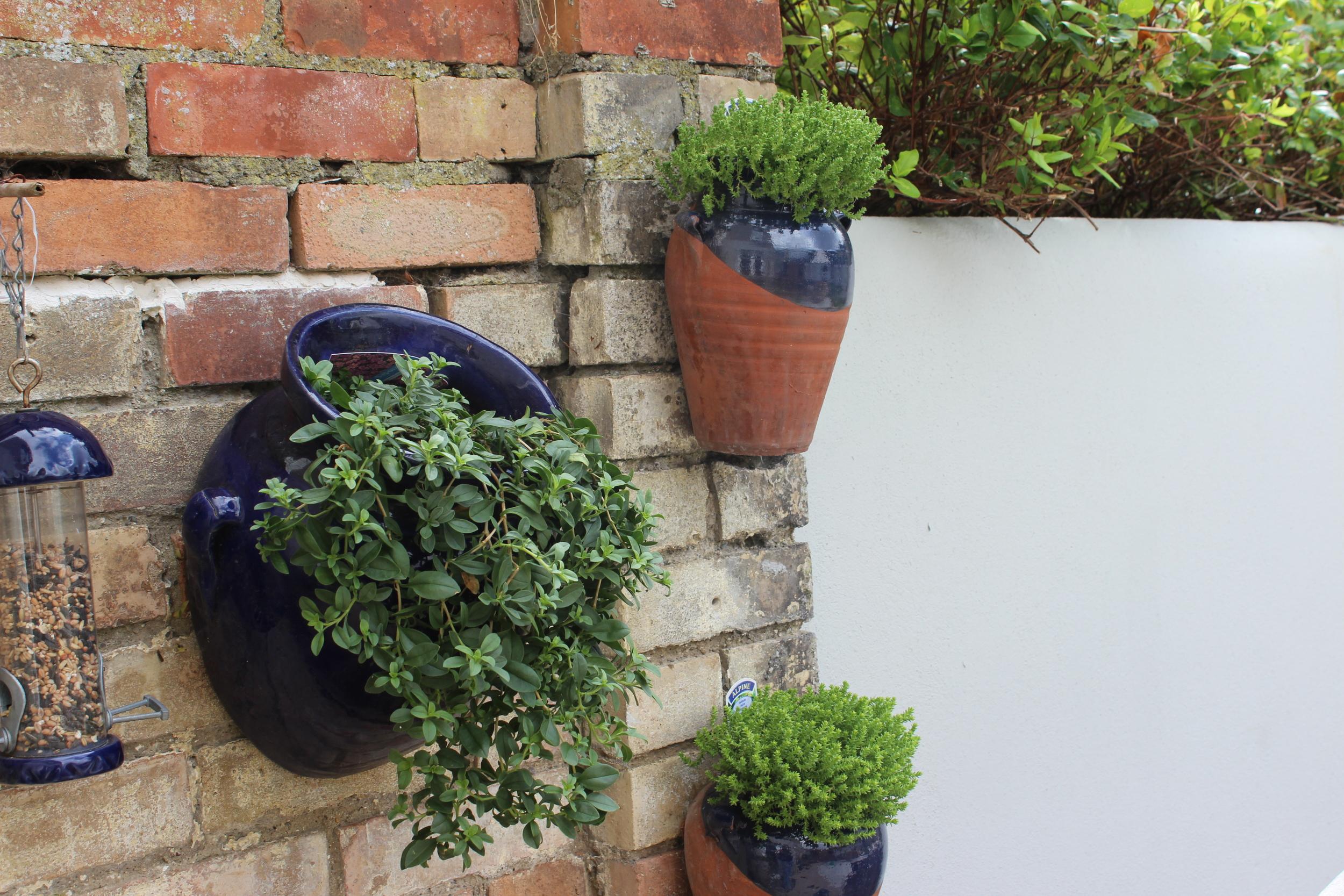 Hanging garden pots