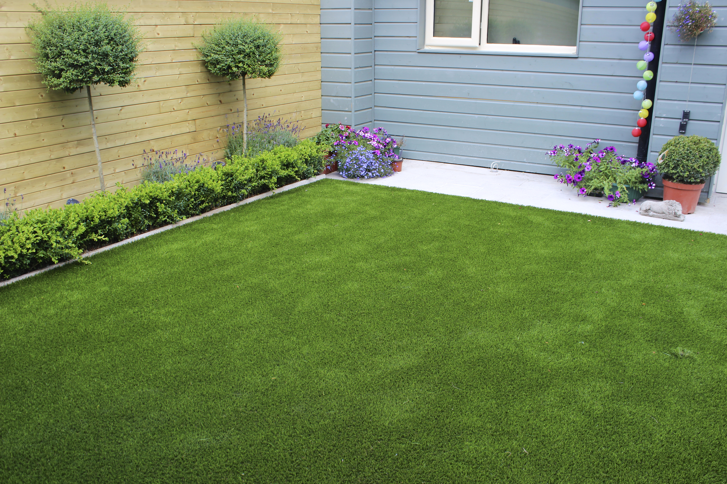 New Finesse Deluxe Lawn