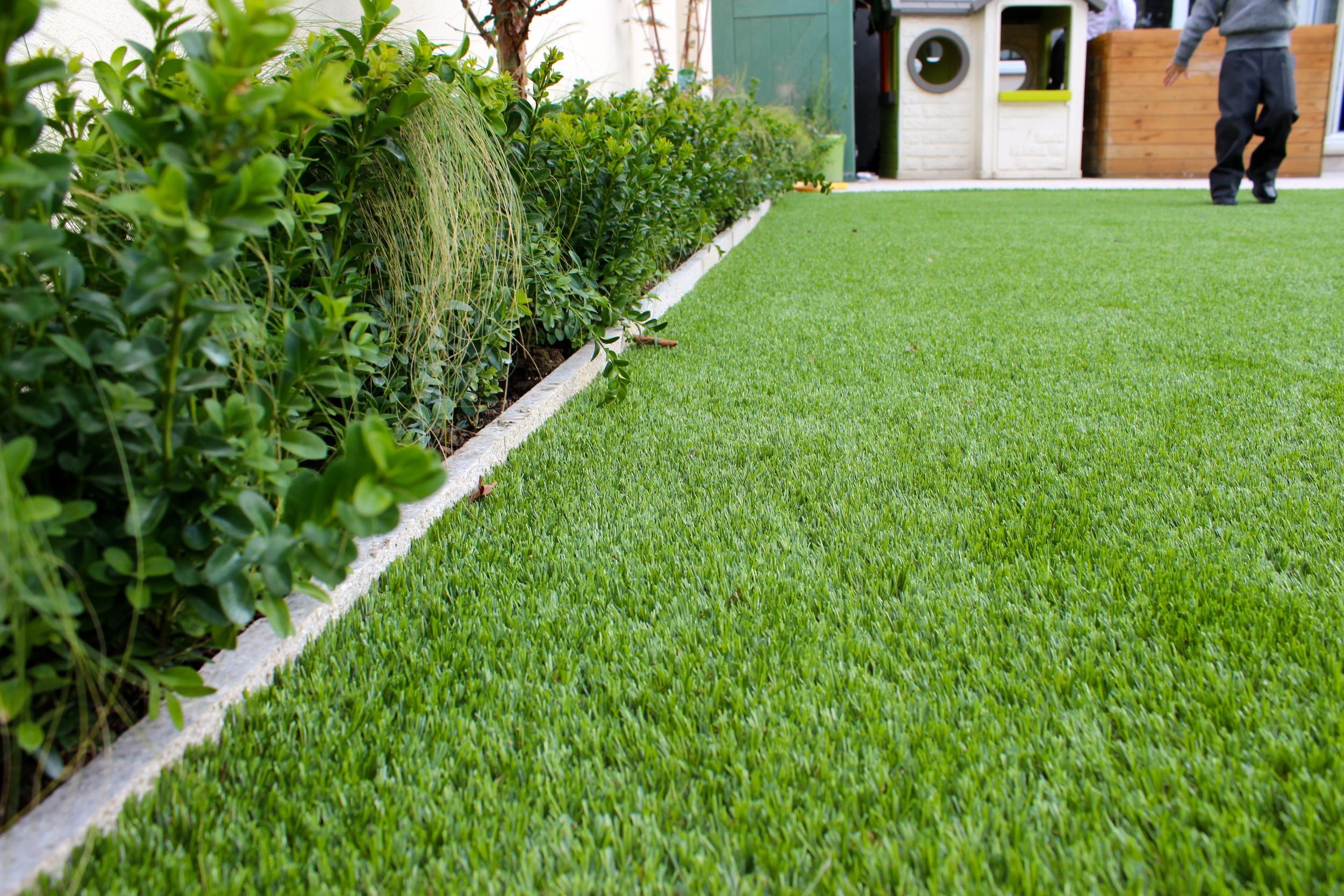 Stipa Grasses