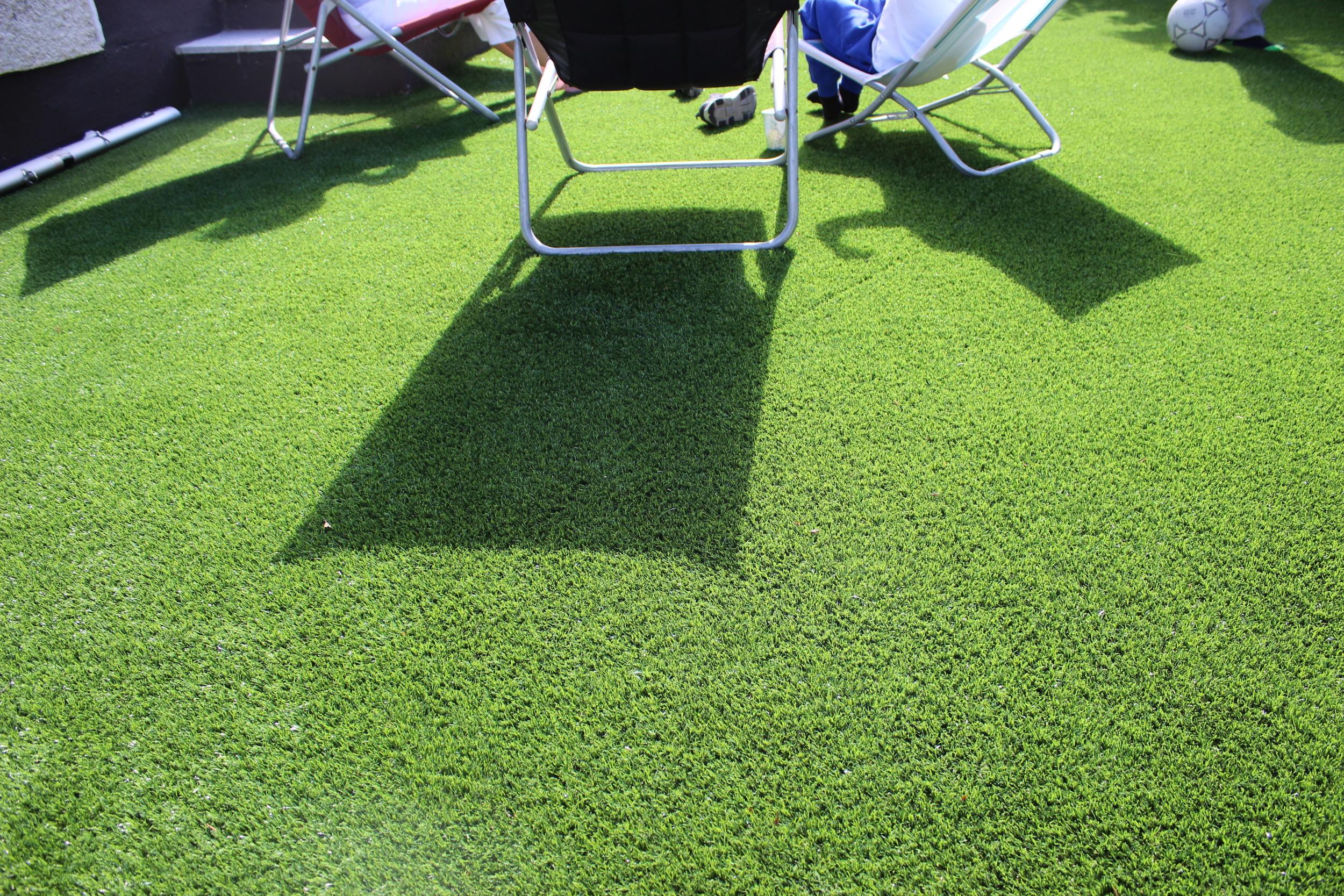 shaded garden lawn