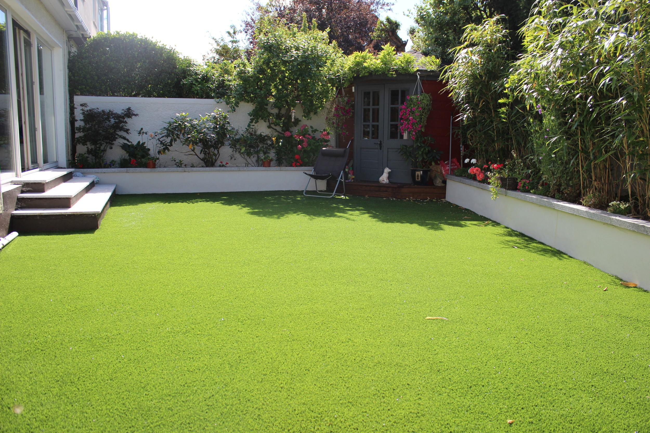 New lawn turf