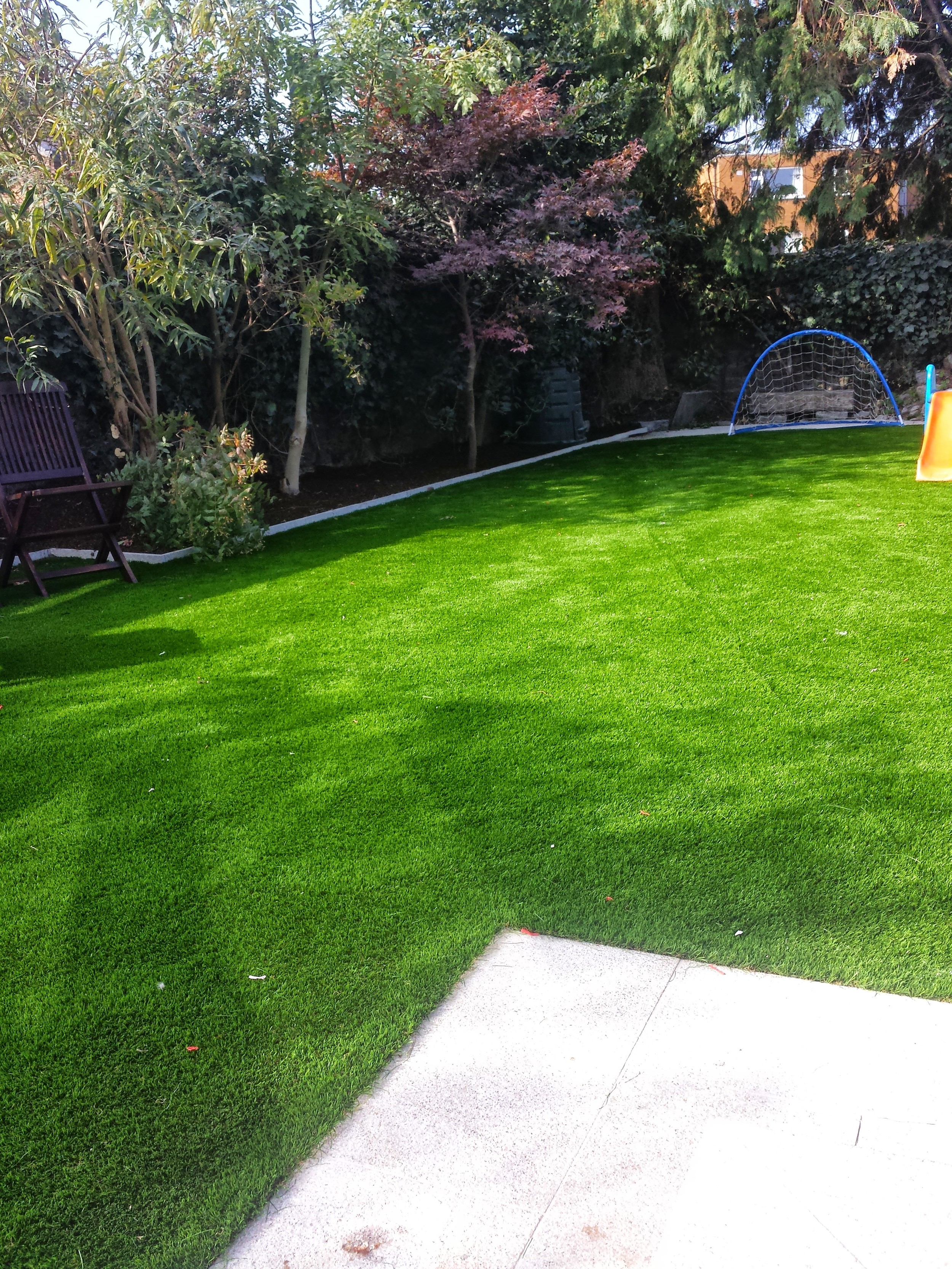 lawn and paving