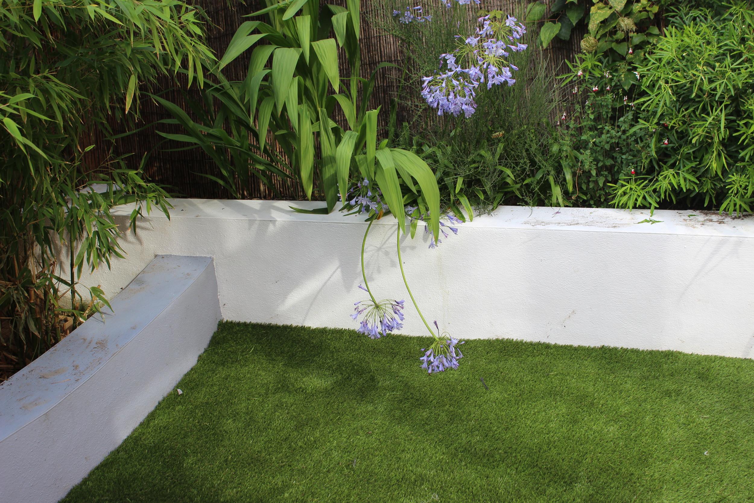 Ranelagh Artificial Grass