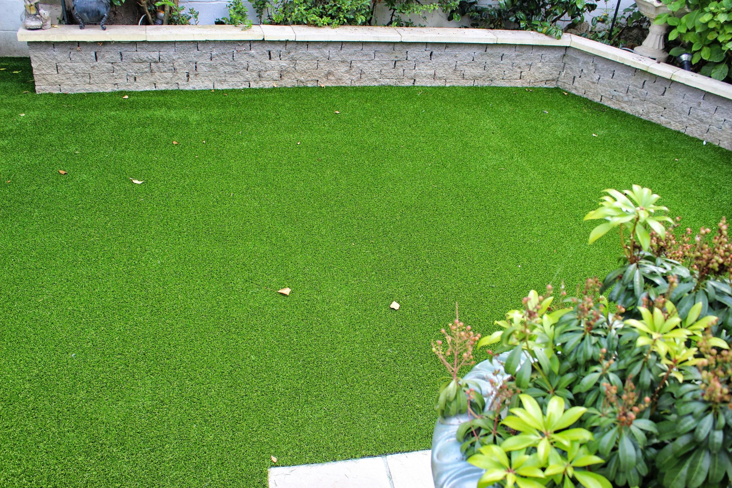 small Garden Lawn