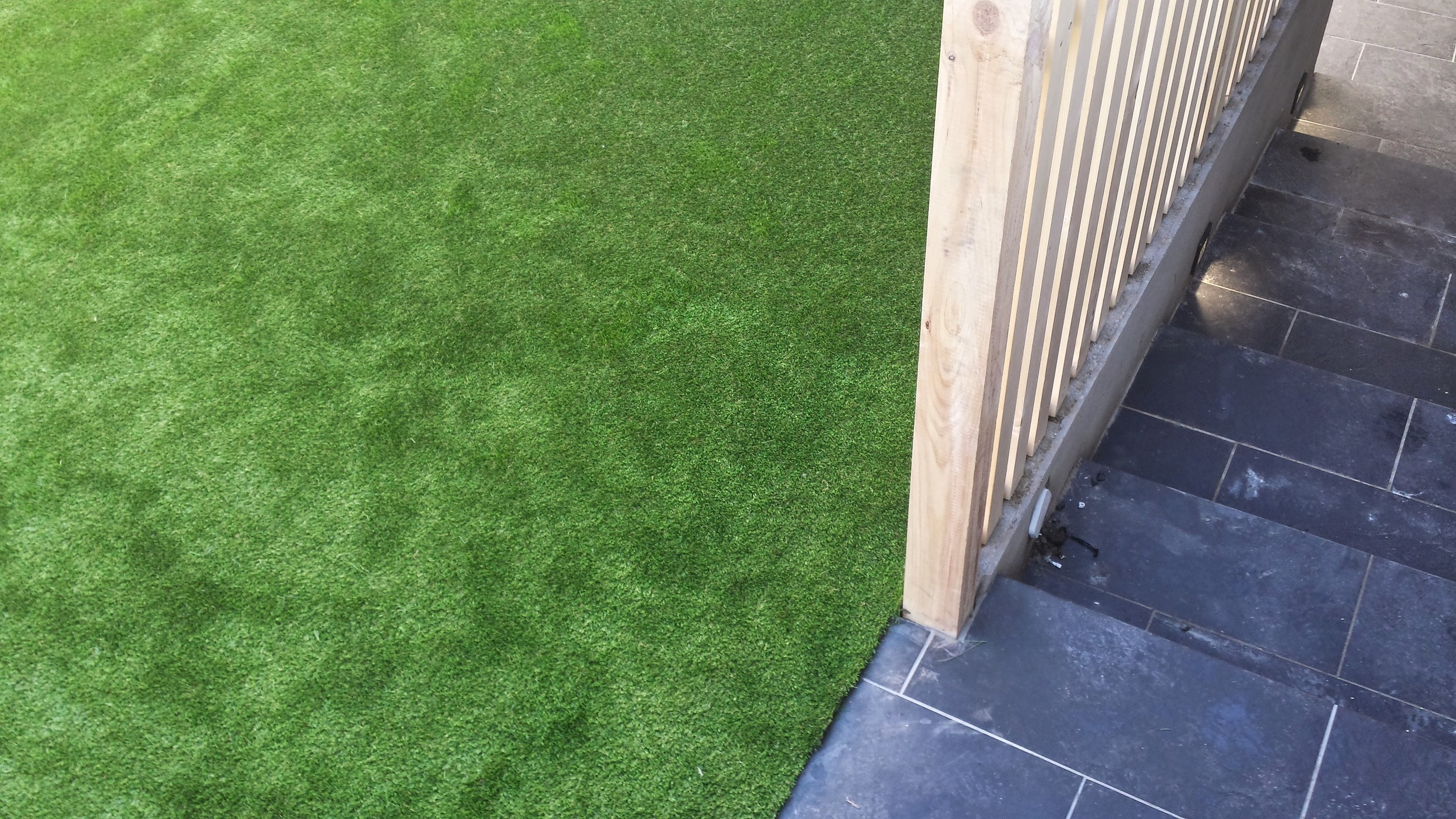 Grass and Steps