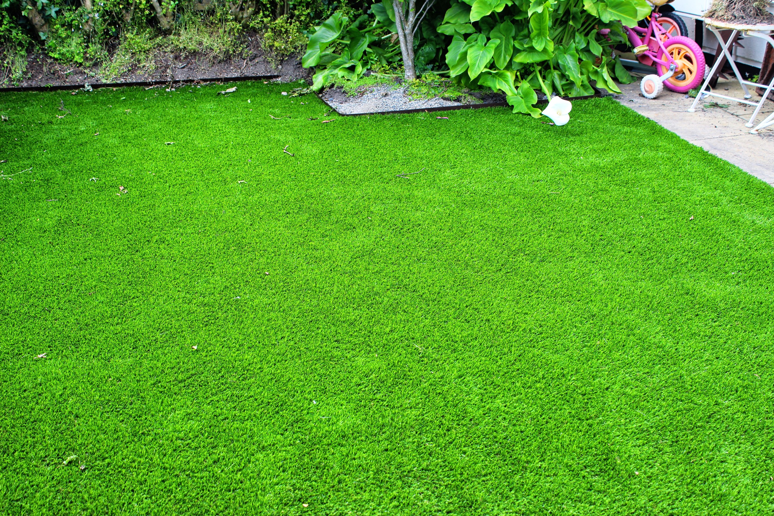 front lawn in synthetic grass
