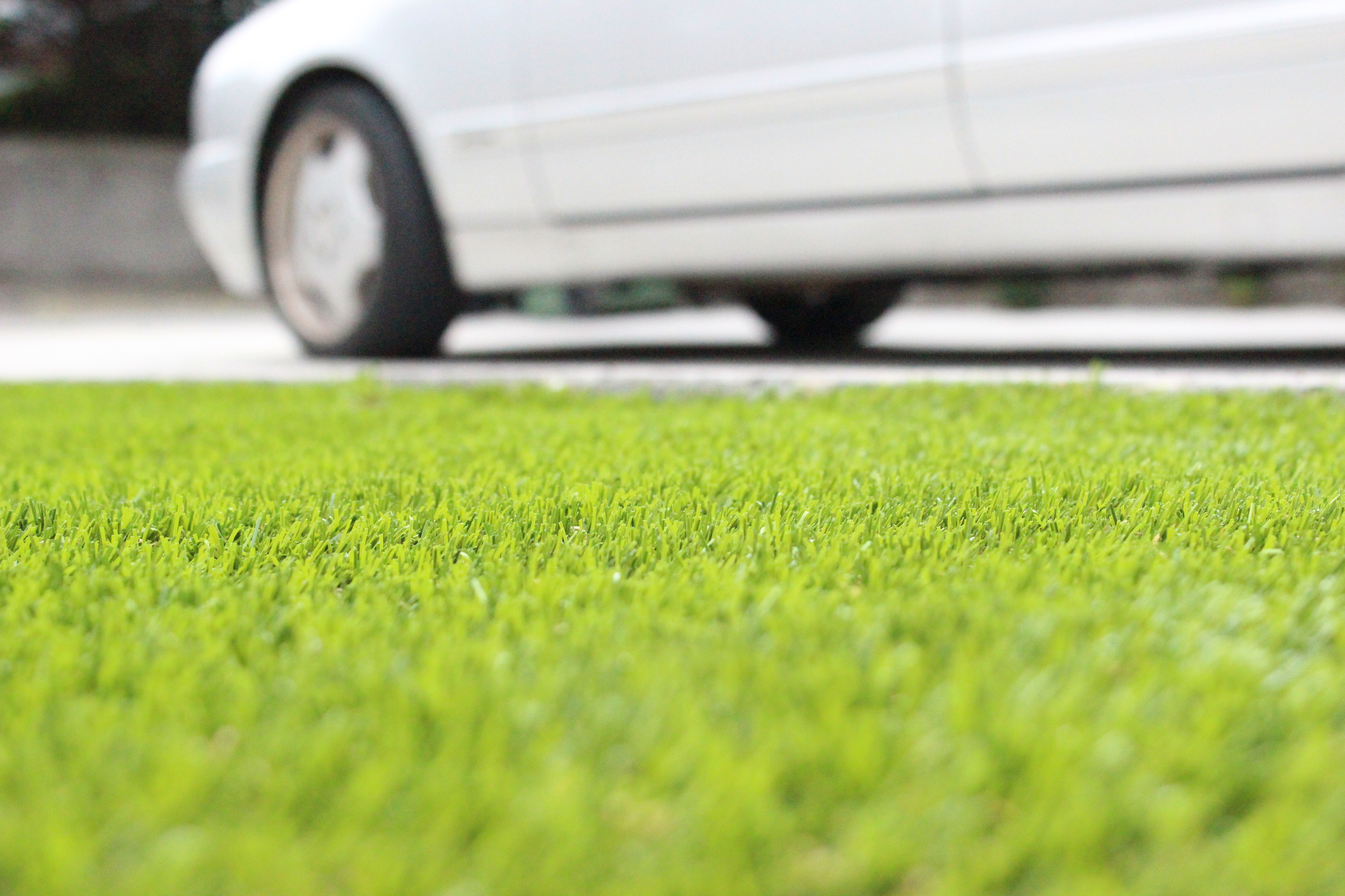 car and lawn