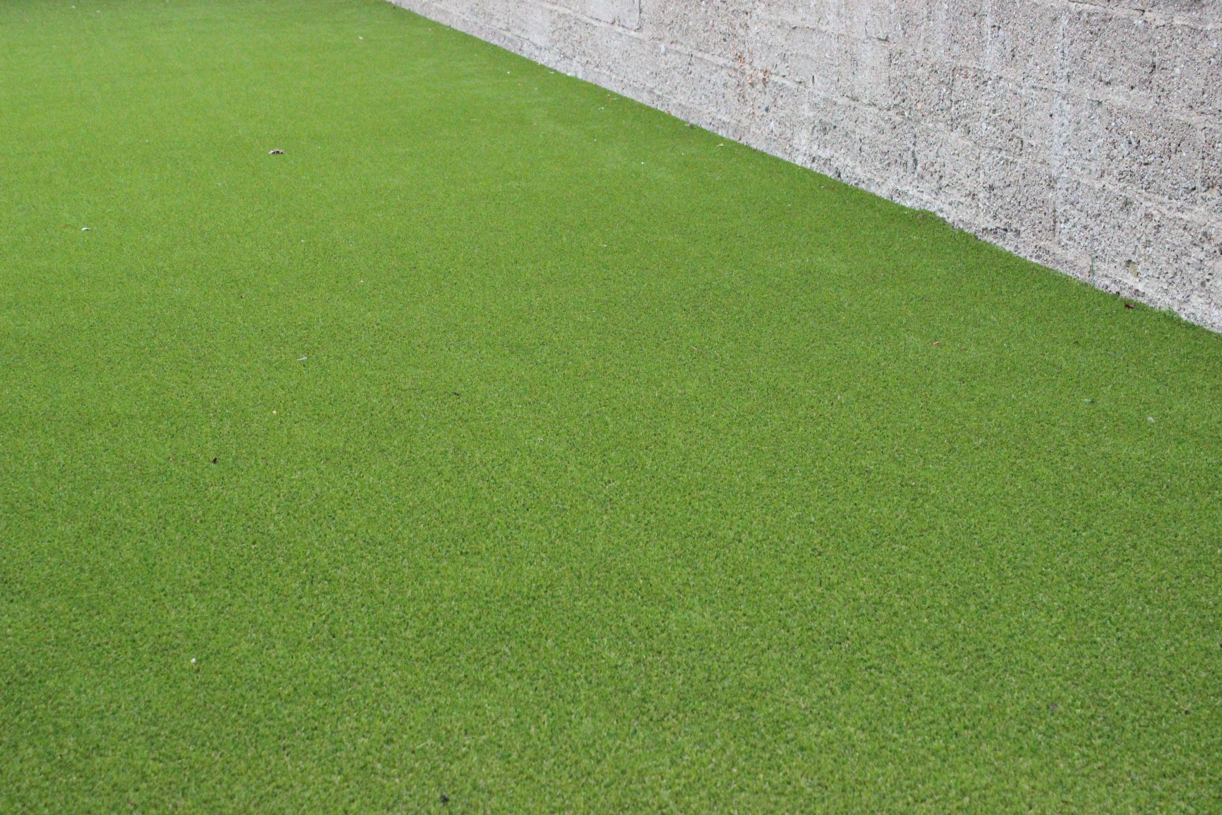 Green artificial lawn turf