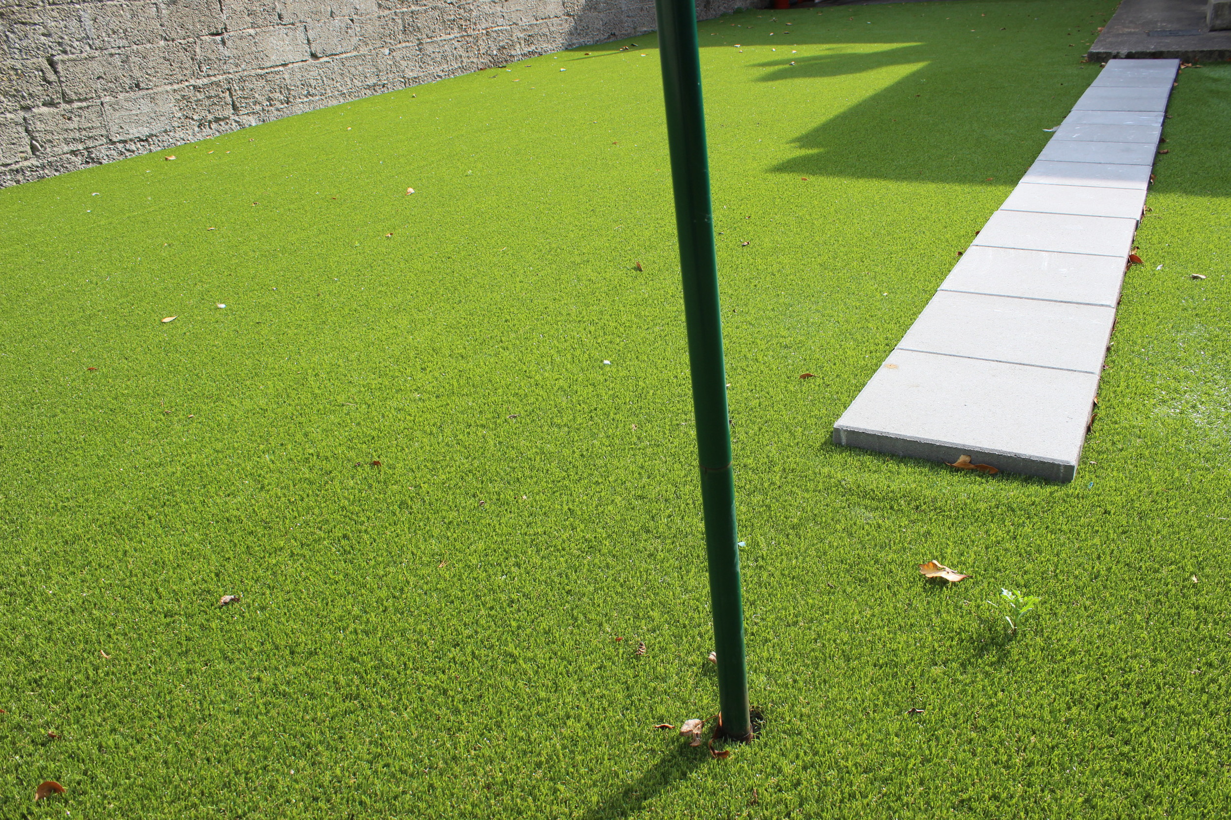 grass and pavers