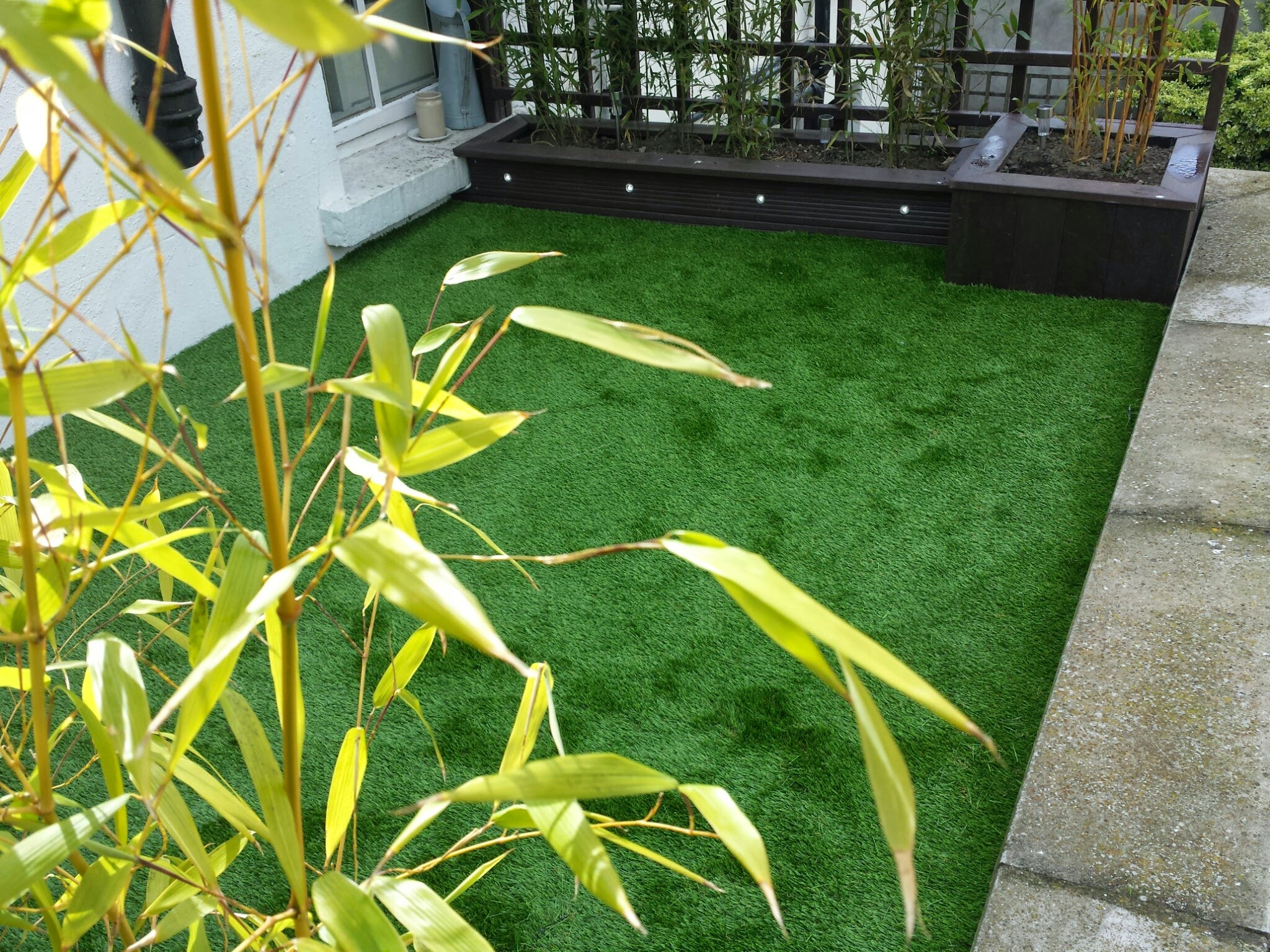 balcony grass.jpg