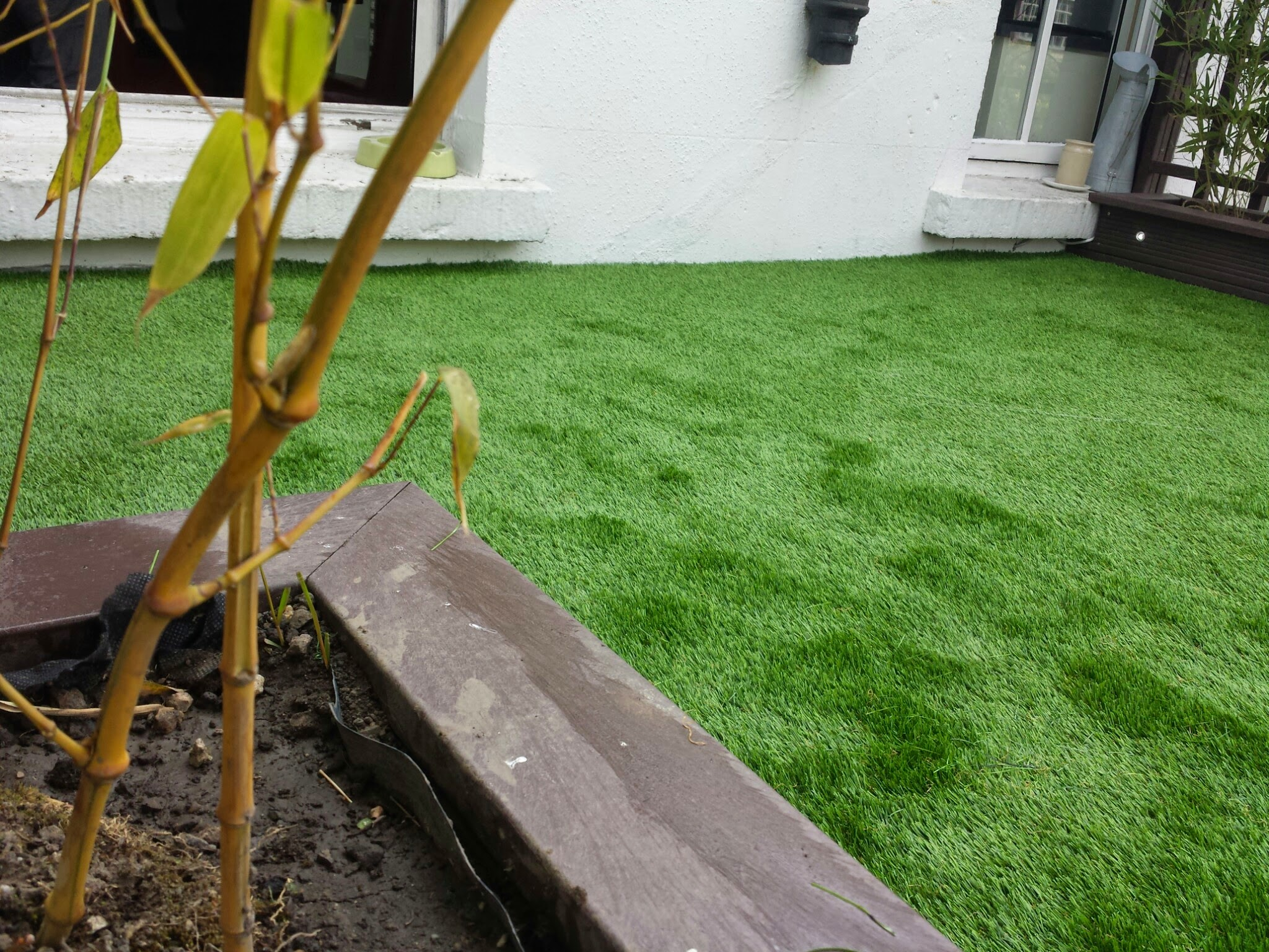 Raised beds and grass