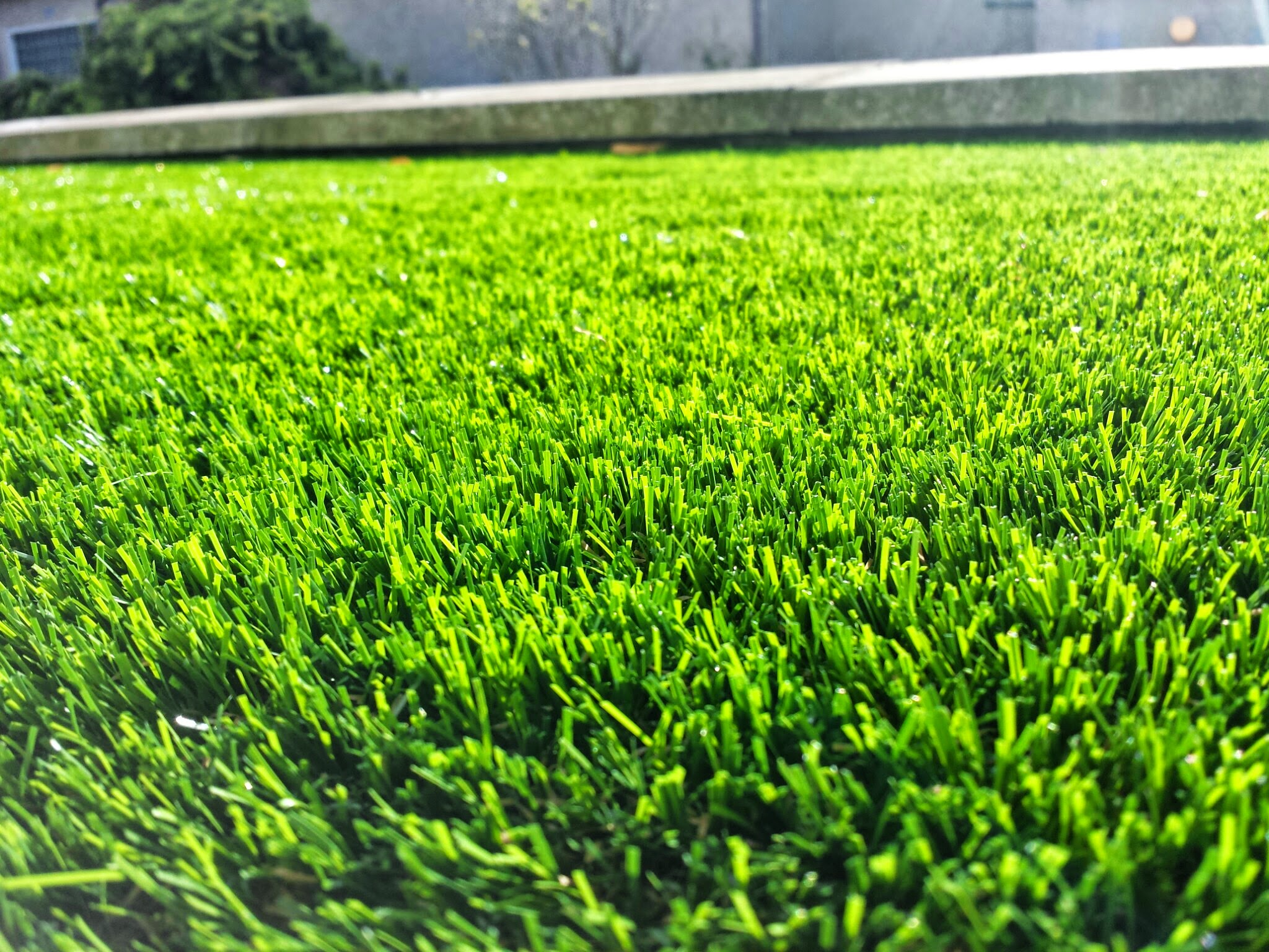 close up of artificial lawn