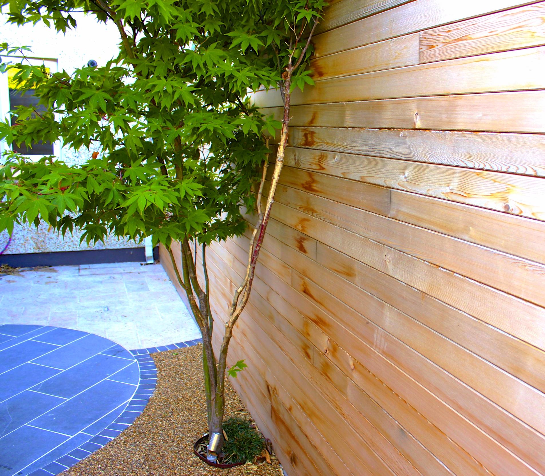 maple and cedar fencing