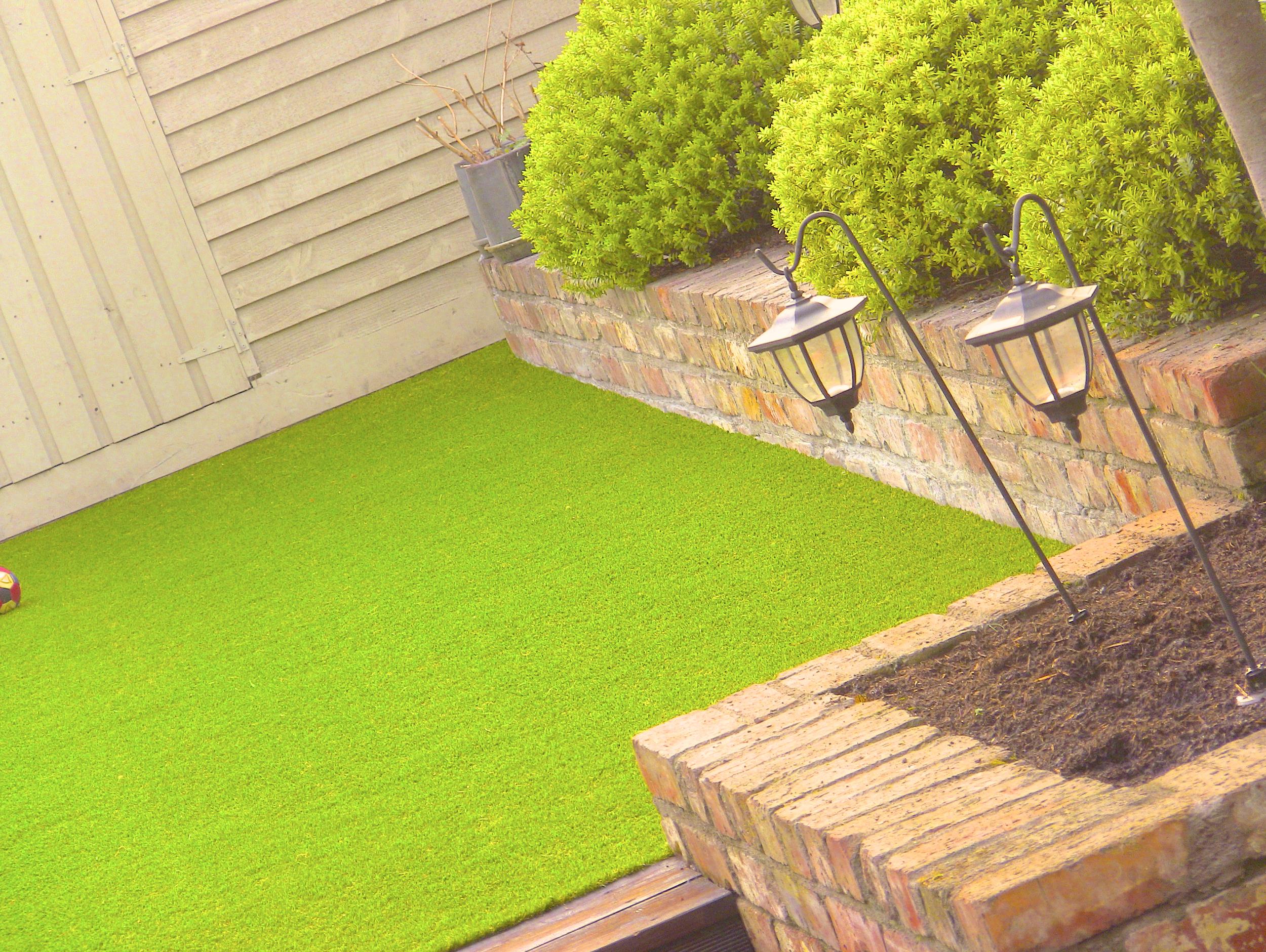 garden lawn design