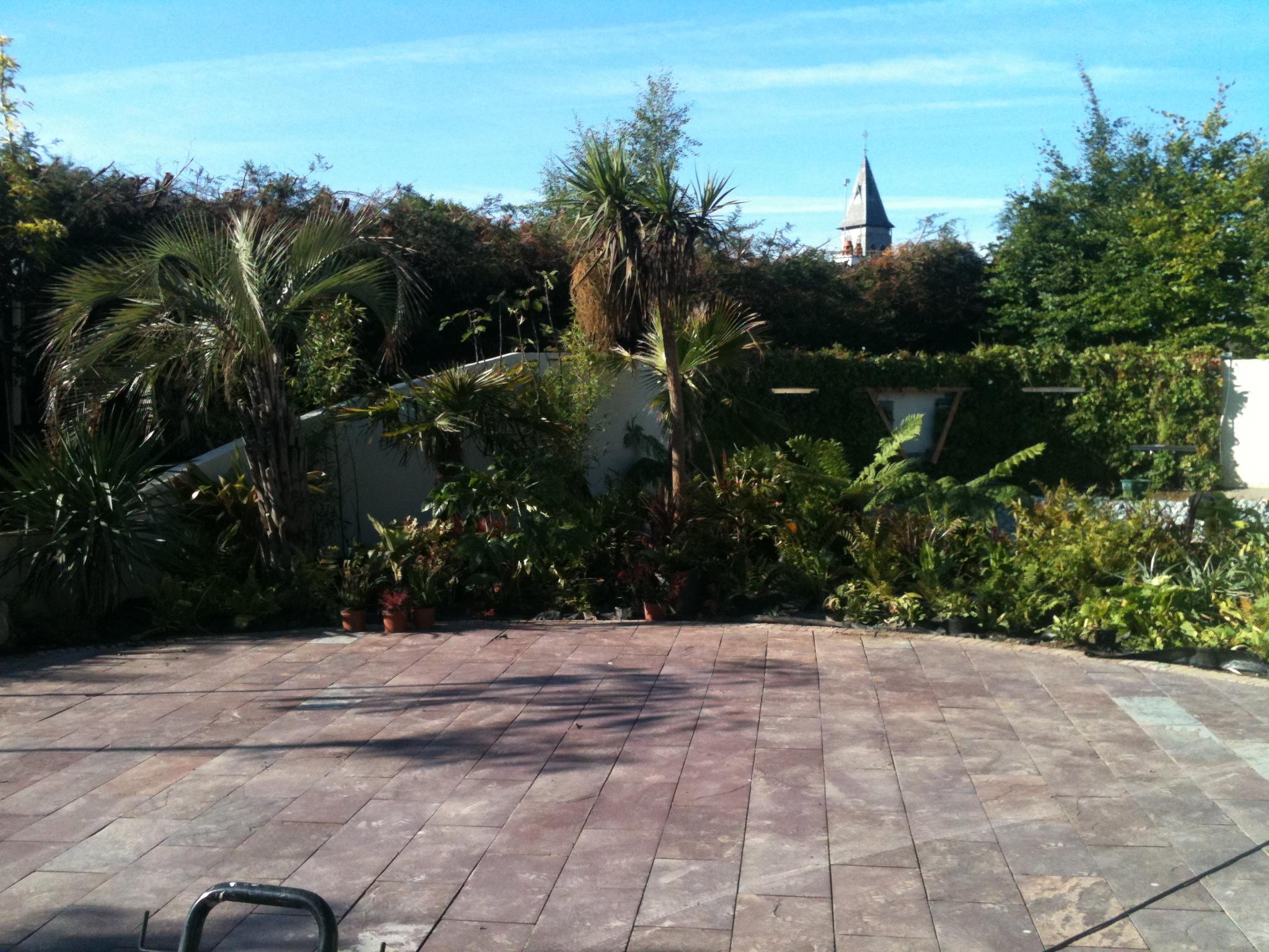 exotic garden ireland.JPG