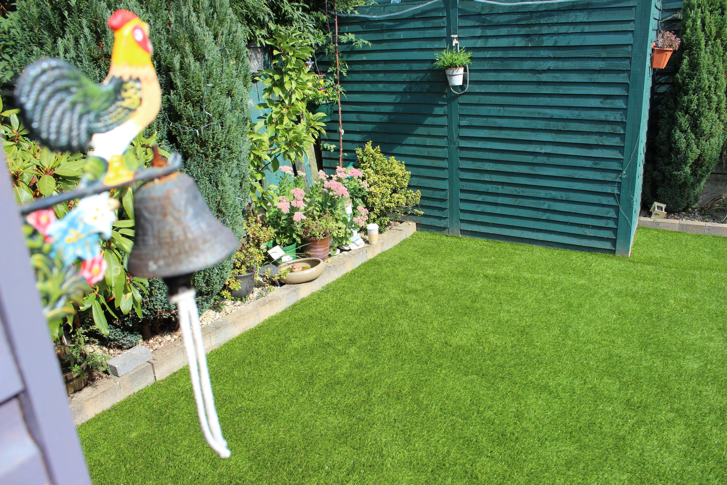 grass and lawn