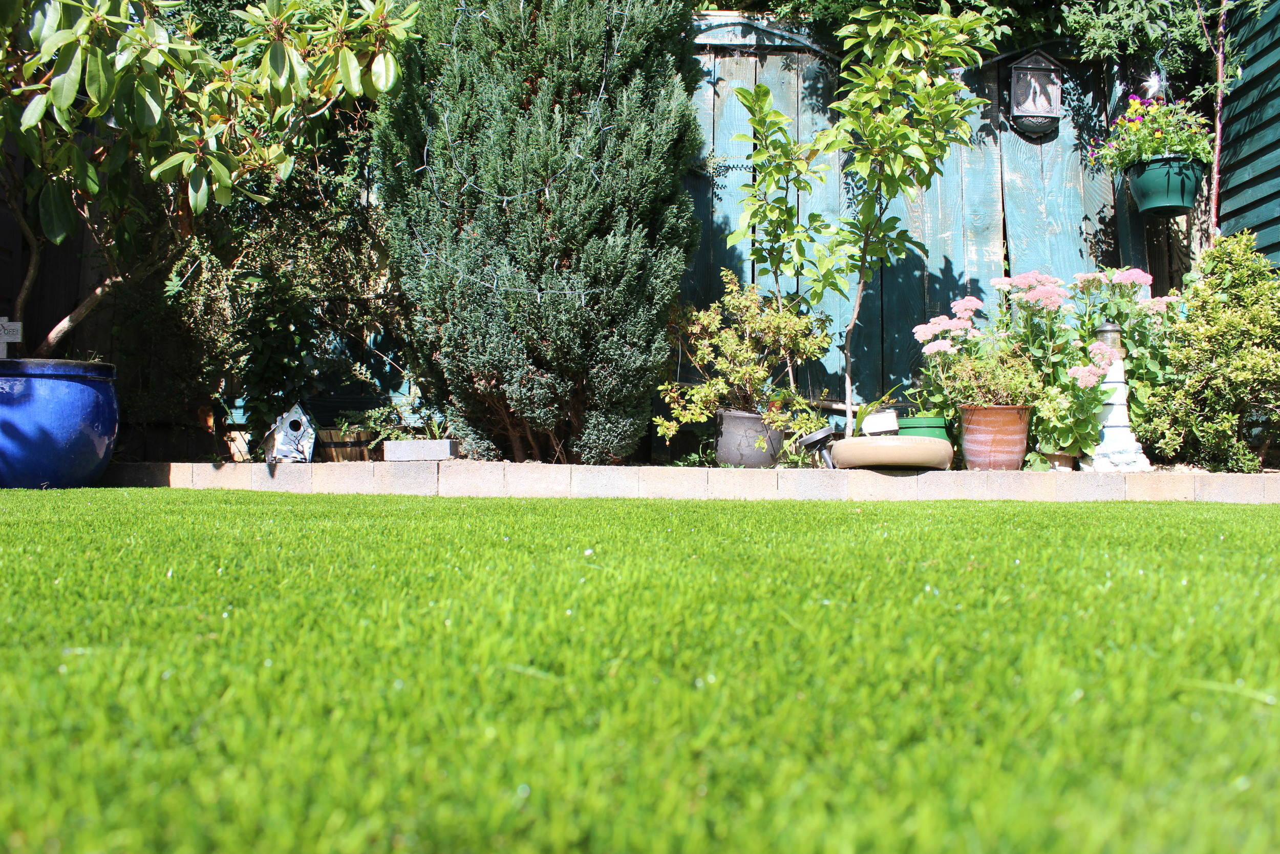 Finesse Deluxe lawn Turf
