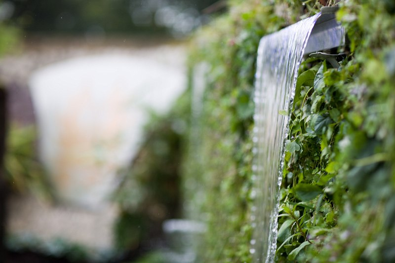 bloom water wall with vertical planting.jpg