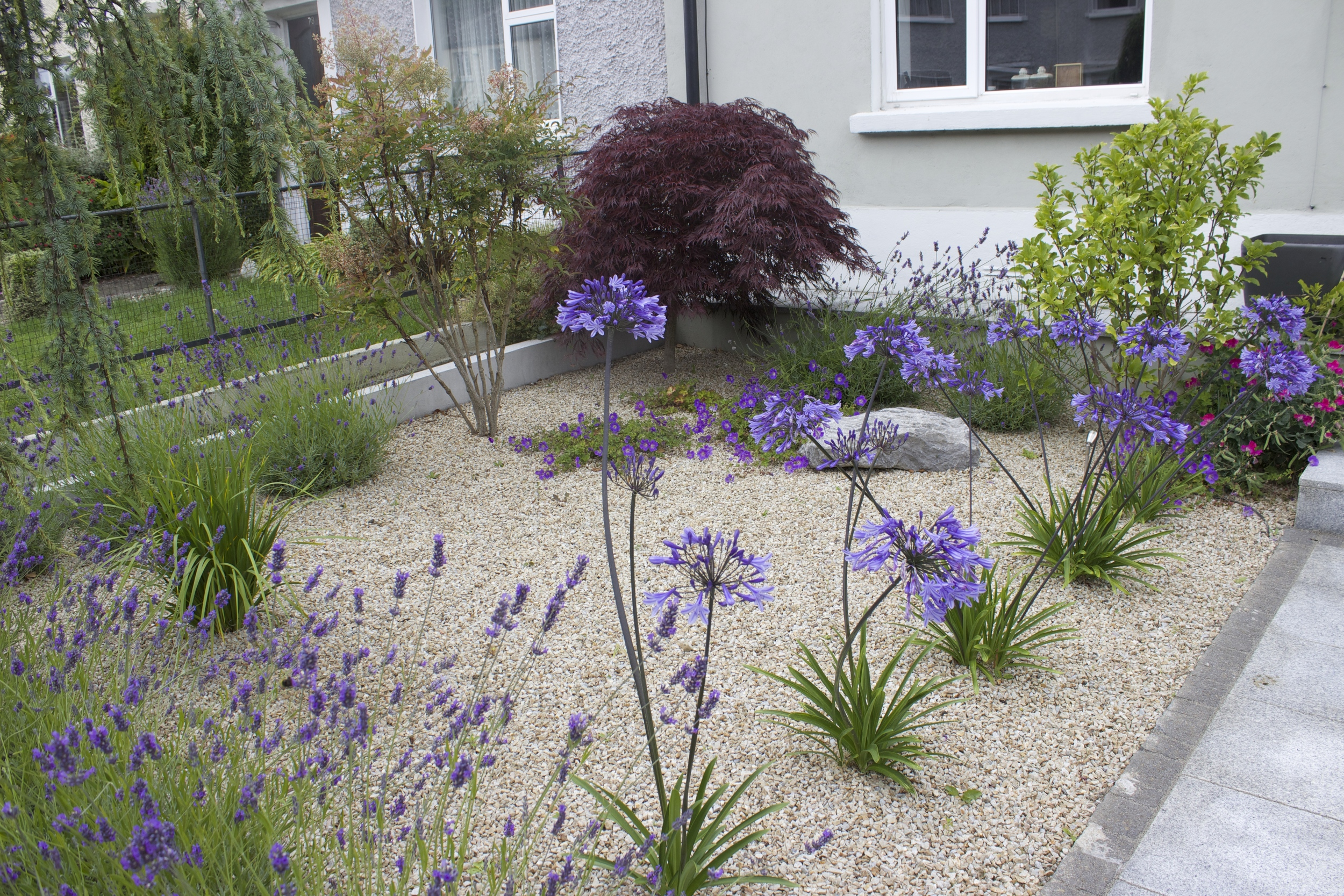 Front Garden and Driveways