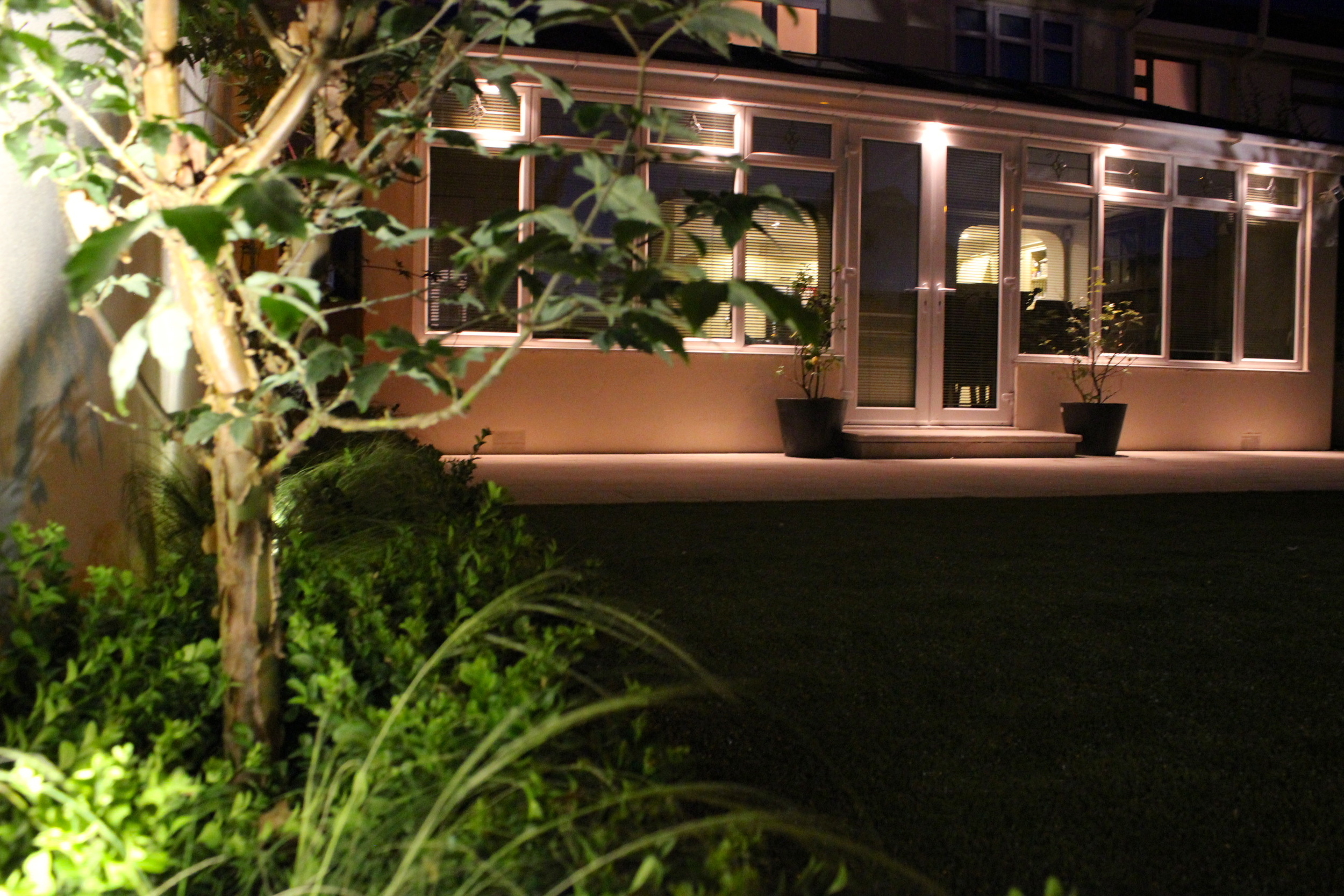 Tree and Patio lighting