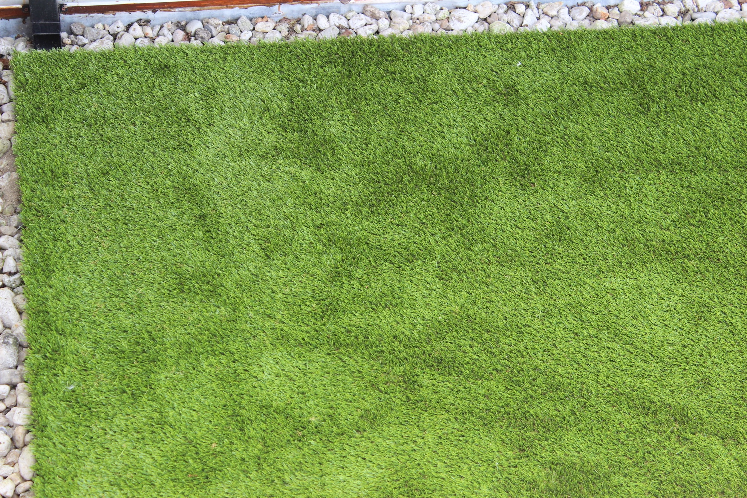 close up of turf.jpg