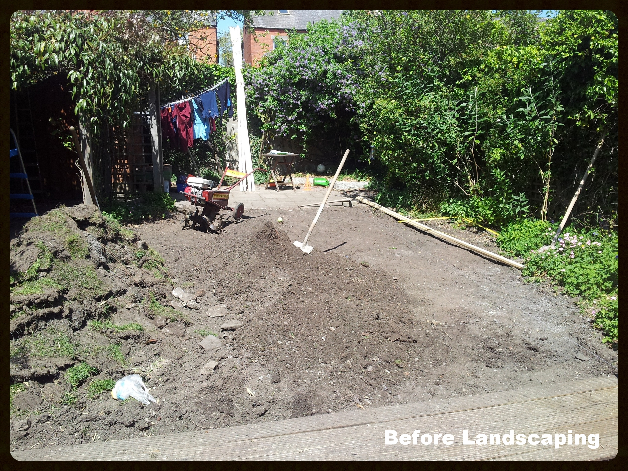 Lawn before landscaping