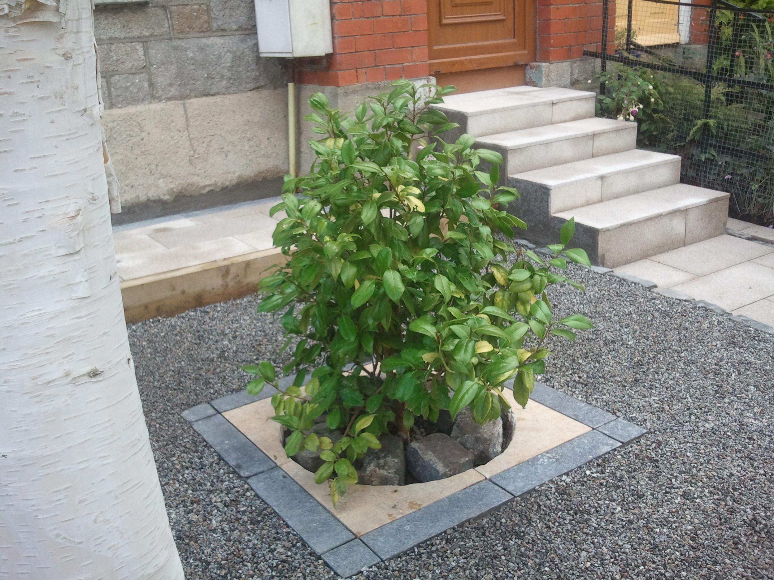 Front Garden Design.jpg