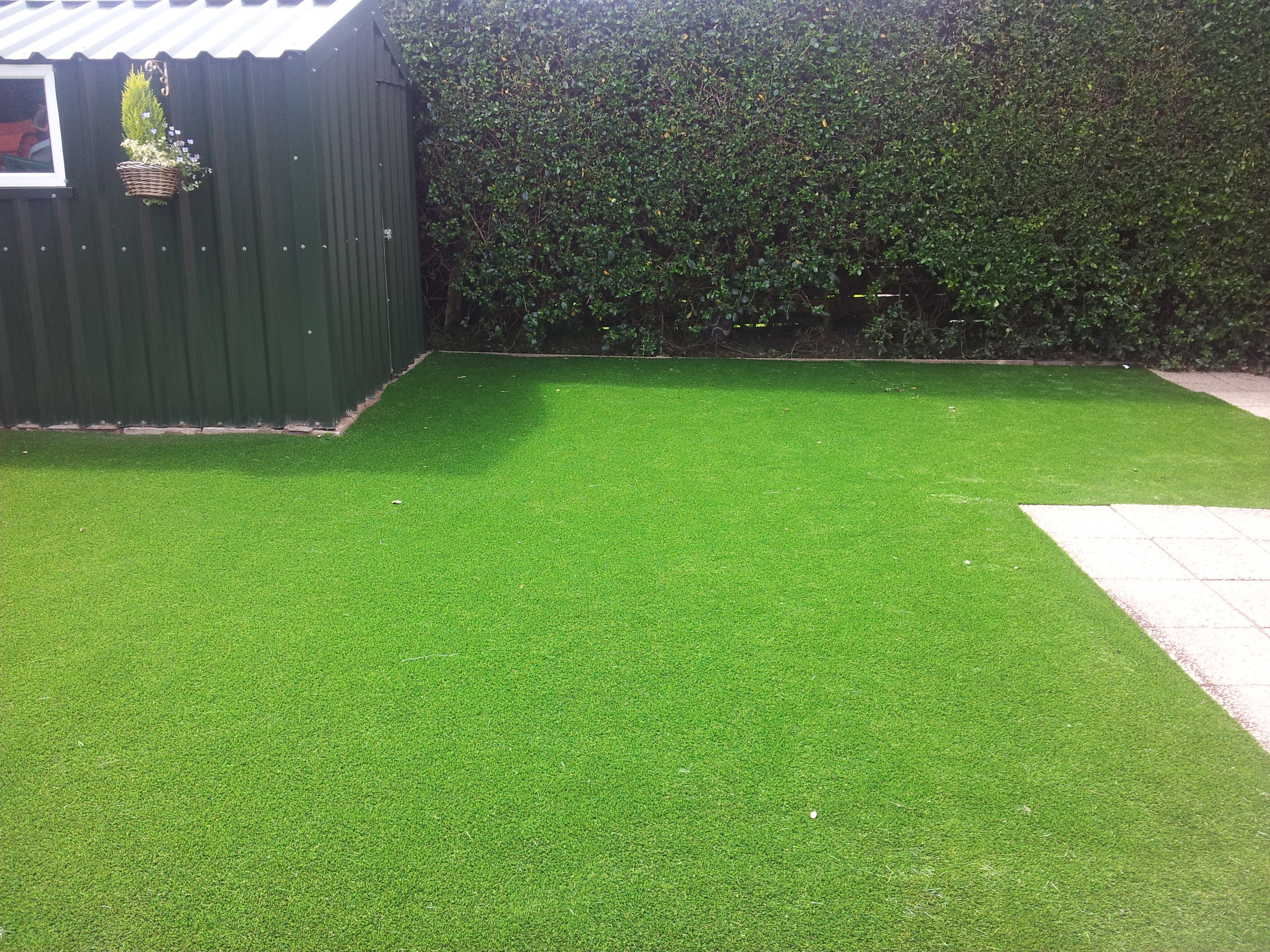 new garden with artificial grass