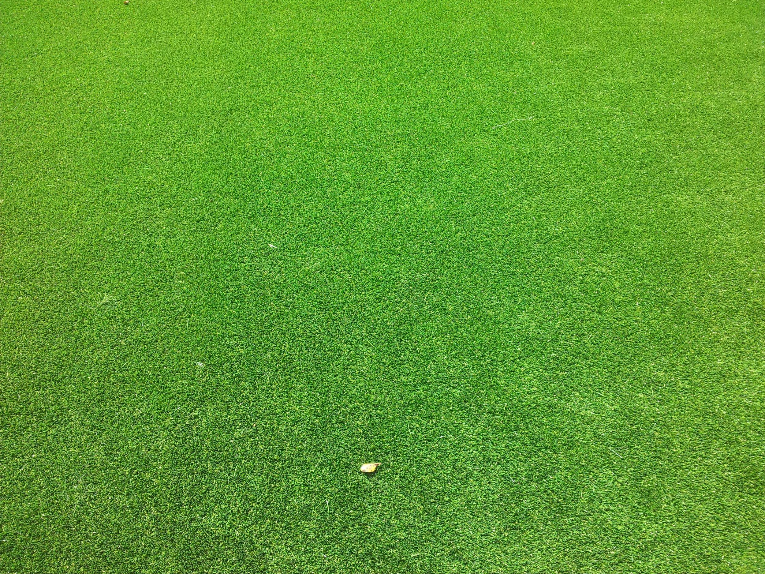 artificial astro turf lawn