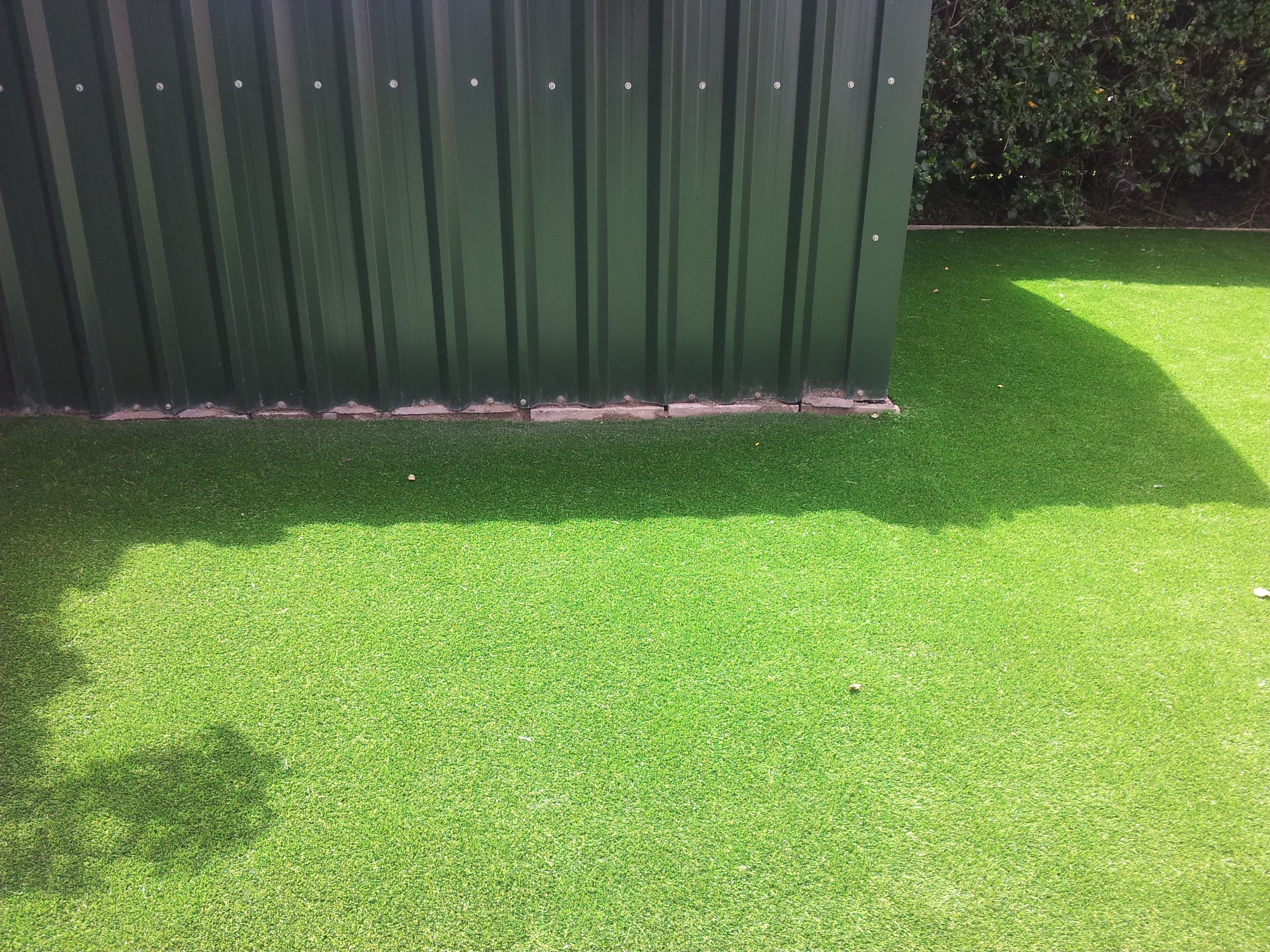 steel shed and grass