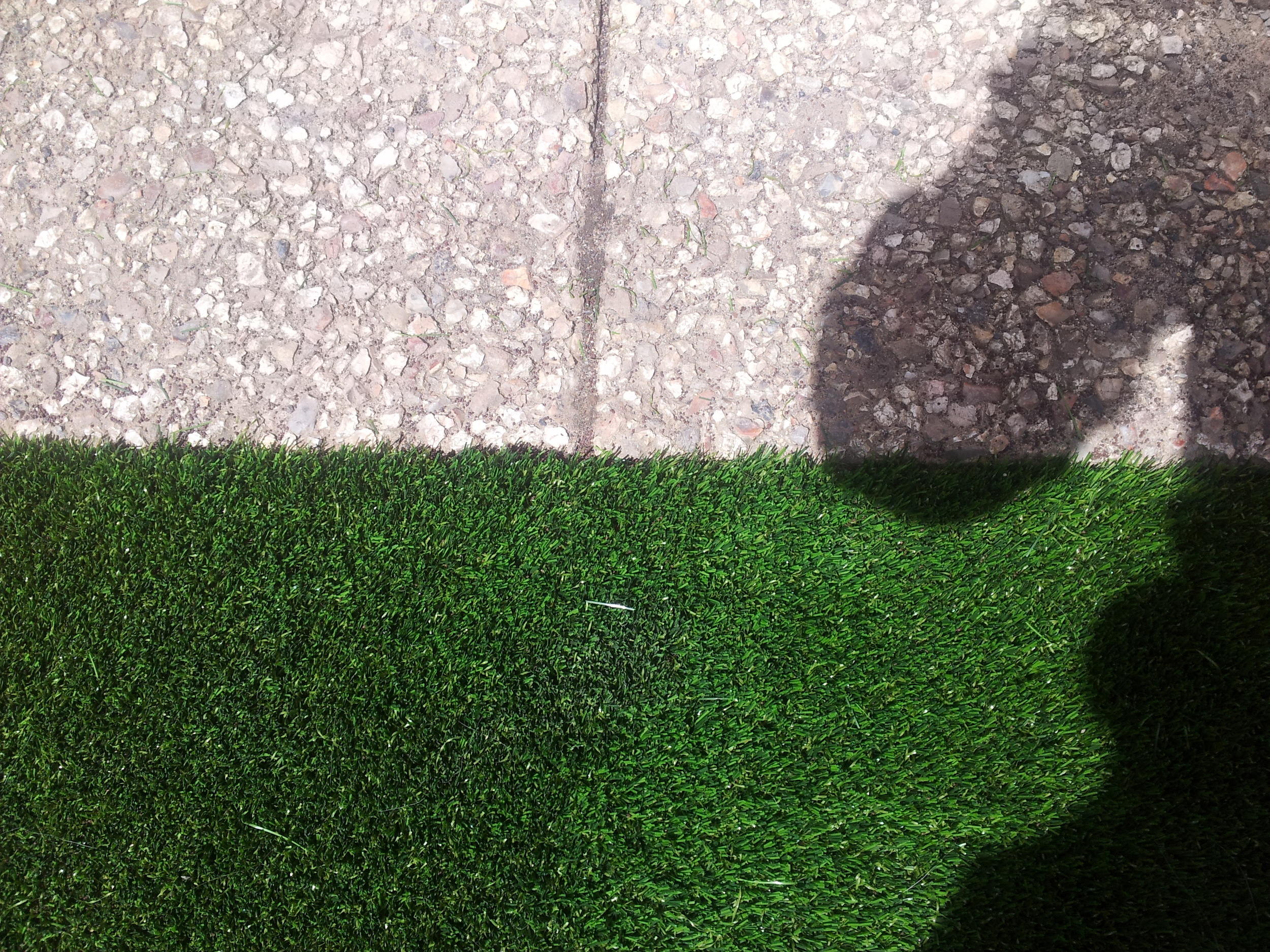 pavers and lawn